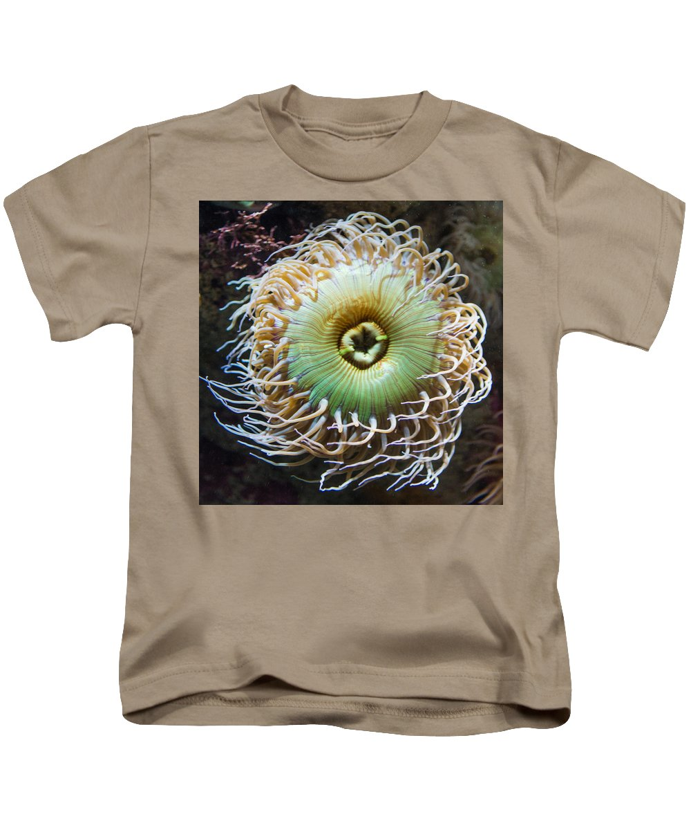 Sea Anemone Kids T-Shirt featuring the photograph Pucker Up by Scott Campbell