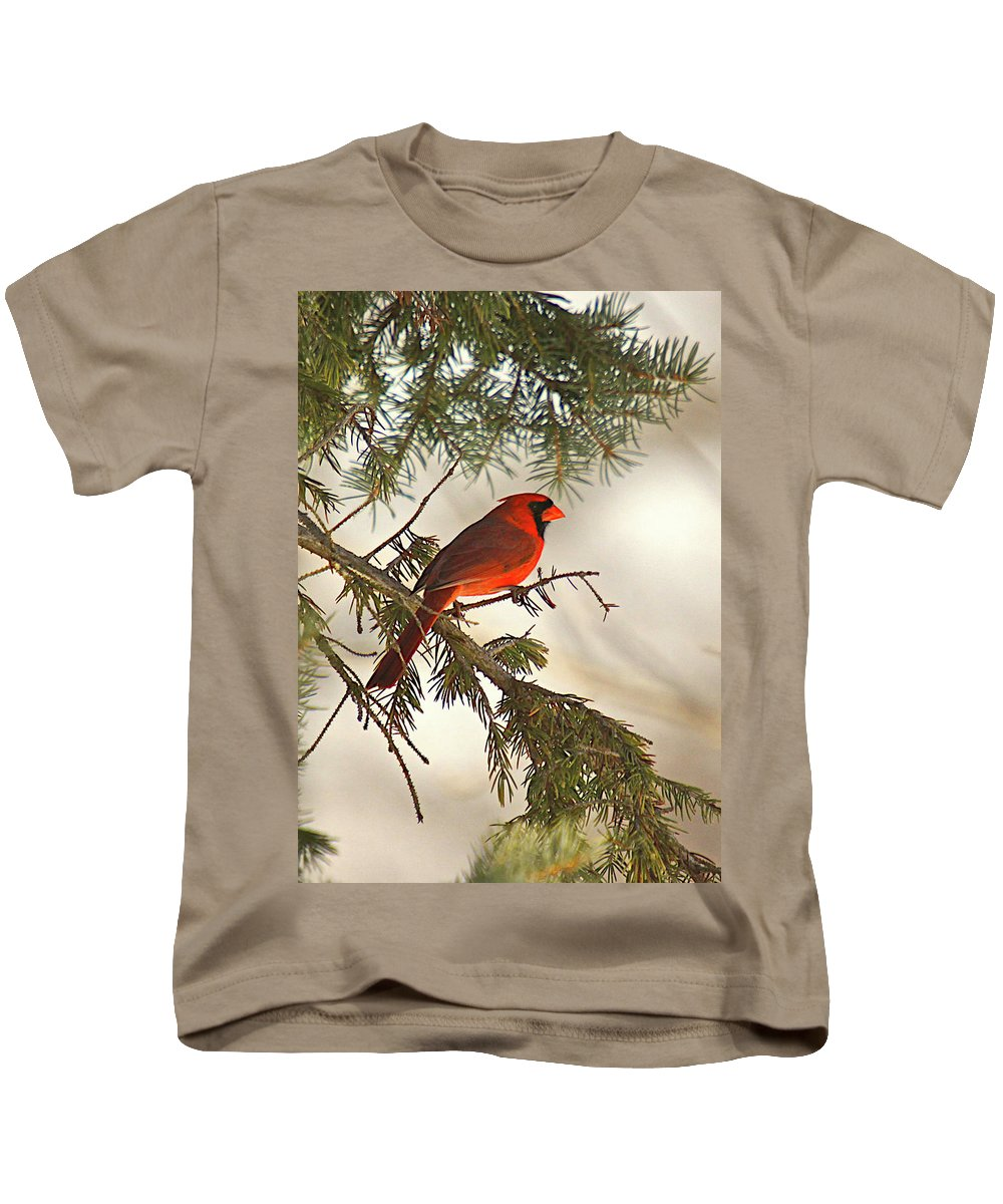 Bird Kids T-Shirt featuring the photograph Red by Robert Pearson