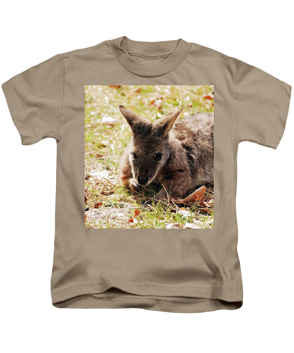 Wallaby Kids T-Shirt featuring the photograph Resting Wallaby by Lori Tambakis