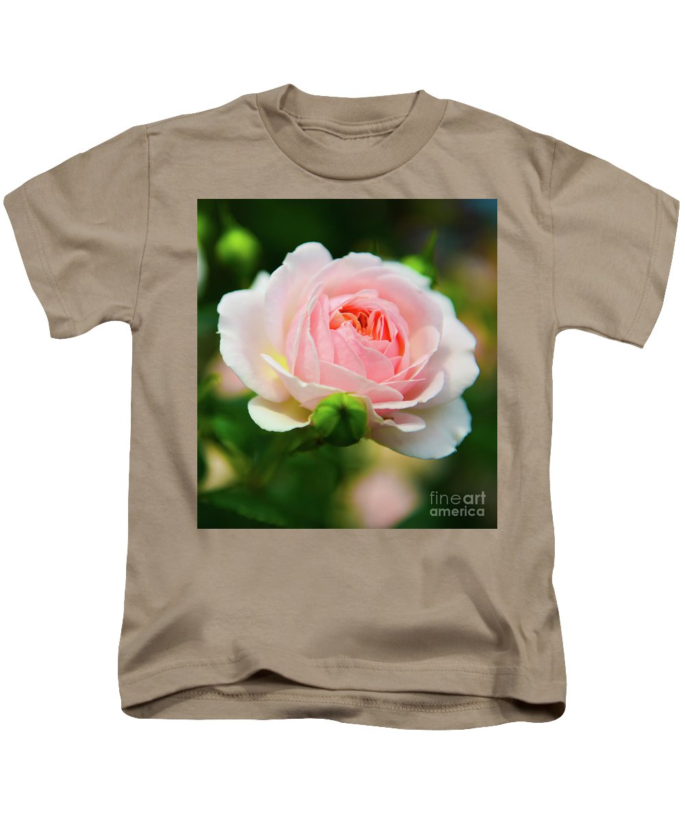 Rose Kids T-Shirt featuring the photograph Rose 1 by Kevin Williams