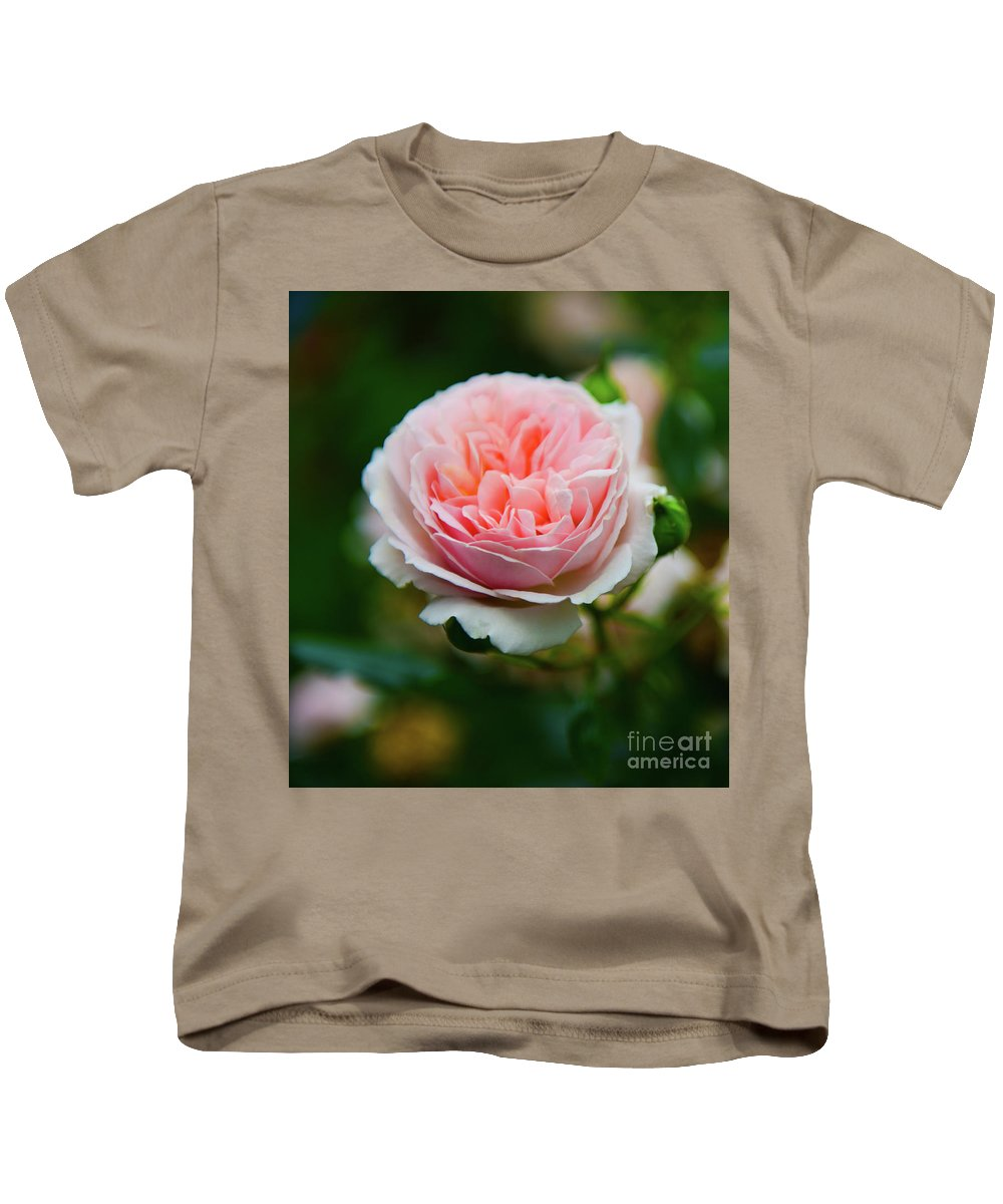 Rose Kids T-Shirt featuring the photograph Rose 3 by Kevin Williams