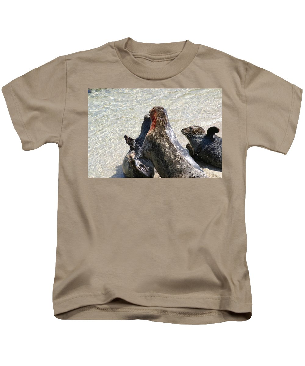 Seals Kids T-Shirt featuring the photograph Seal Fight by Anthony Jones