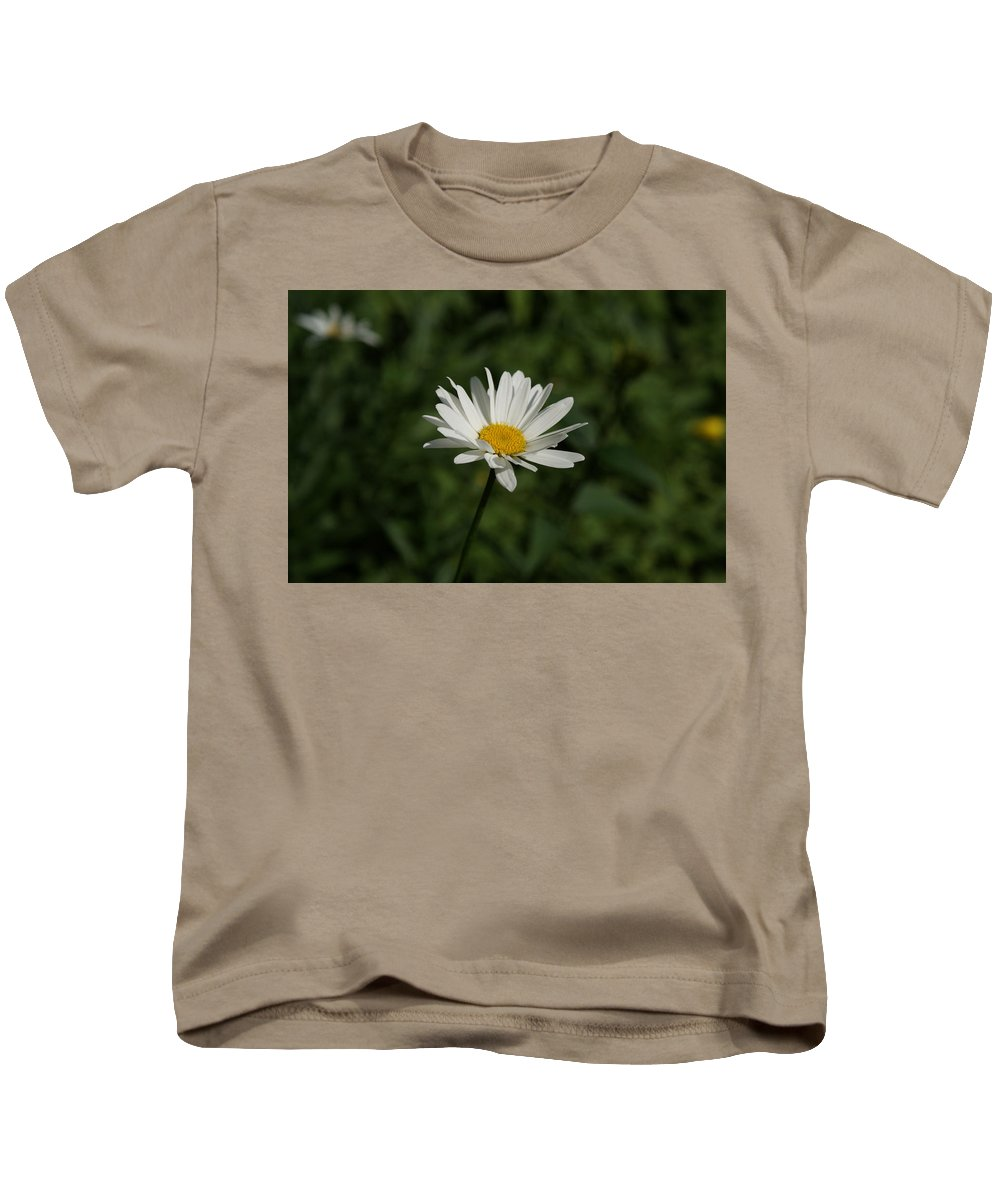Usa Kids T-Shirt featuring the photograph Single Shasta Daisy Bloom by Holly Eads