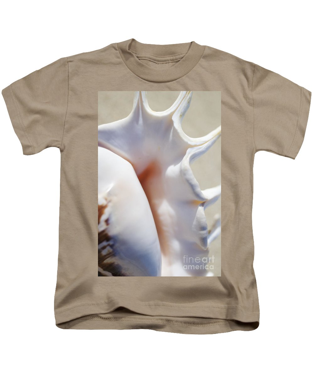 Background Kids T-Shirt featuring the photograph Spider Conch Shell by Mary Van de Ven - Printscapes