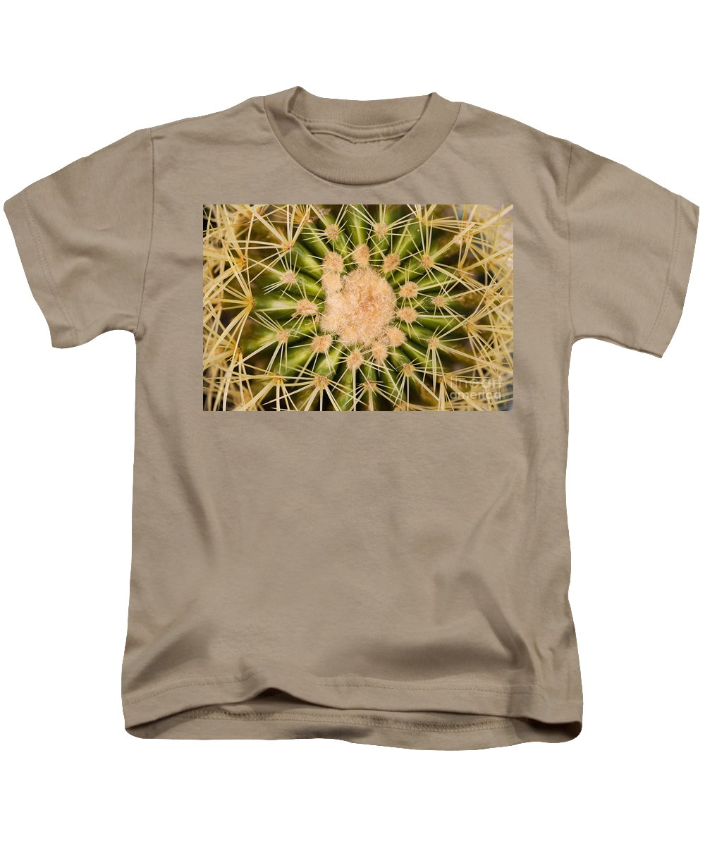 Afternoon Kids T-Shirt featuring the photograph Spiny Cactus Needles by Tomas del Amo - Printscapes