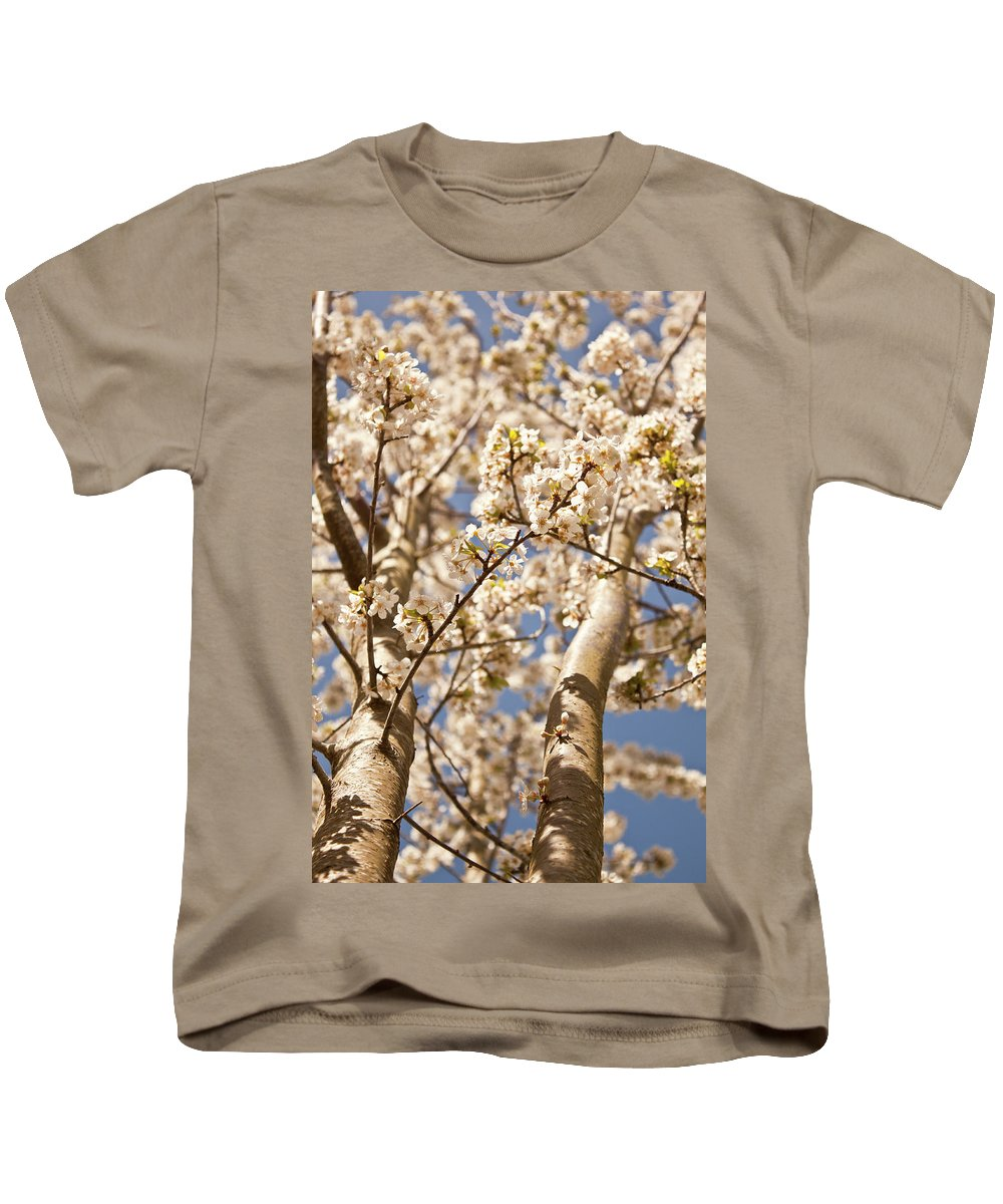 Flowers Kids T-Shirt featuring the photograph Spring Blooms by Danielle Silveira