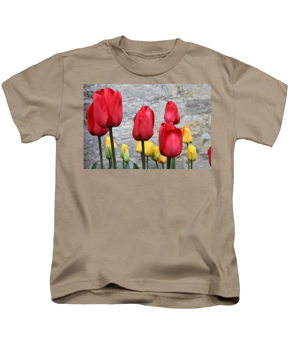 Tulips Kids T-Shirt featuring the photograph Spring Tulips by Lauri Novak