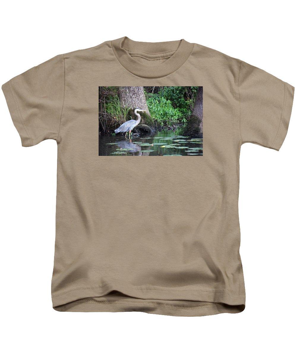 Great Blue Heron Kids T-Shirt featuring the photograph Stalked by Davis FlowerPower