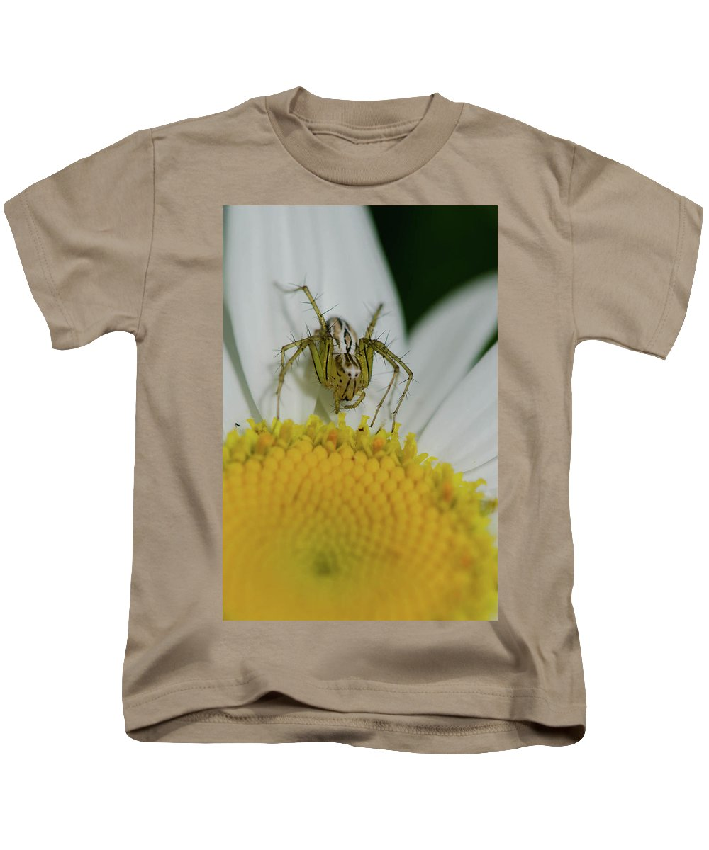 Spider Kids T-Shirt featuring the photograph The Itsy Bitsy Spider by Linda Howes