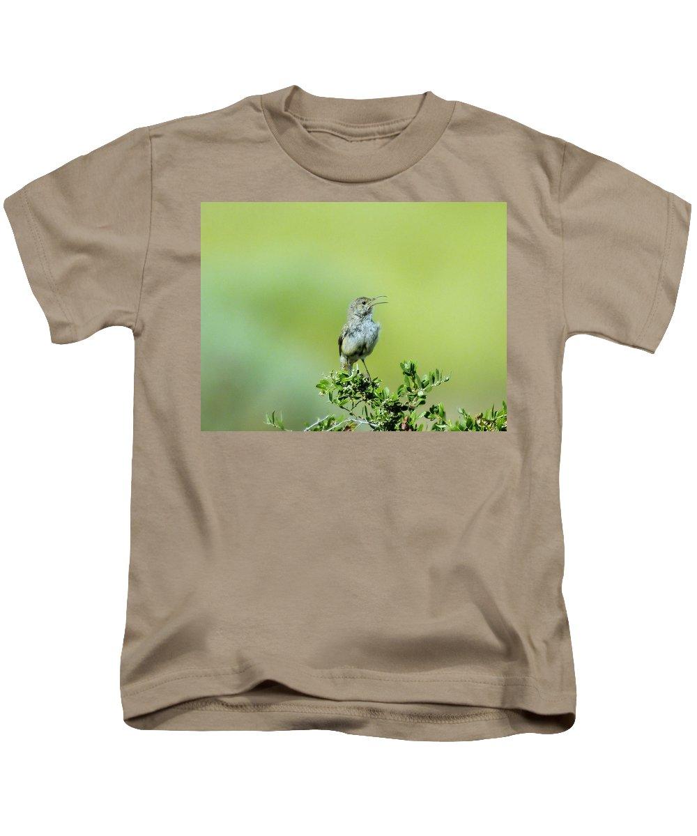 Birds Idaho Birds. Small Birds Kids T-Shirt featuring the photograph The Singing Birdie by Jeff Swan
