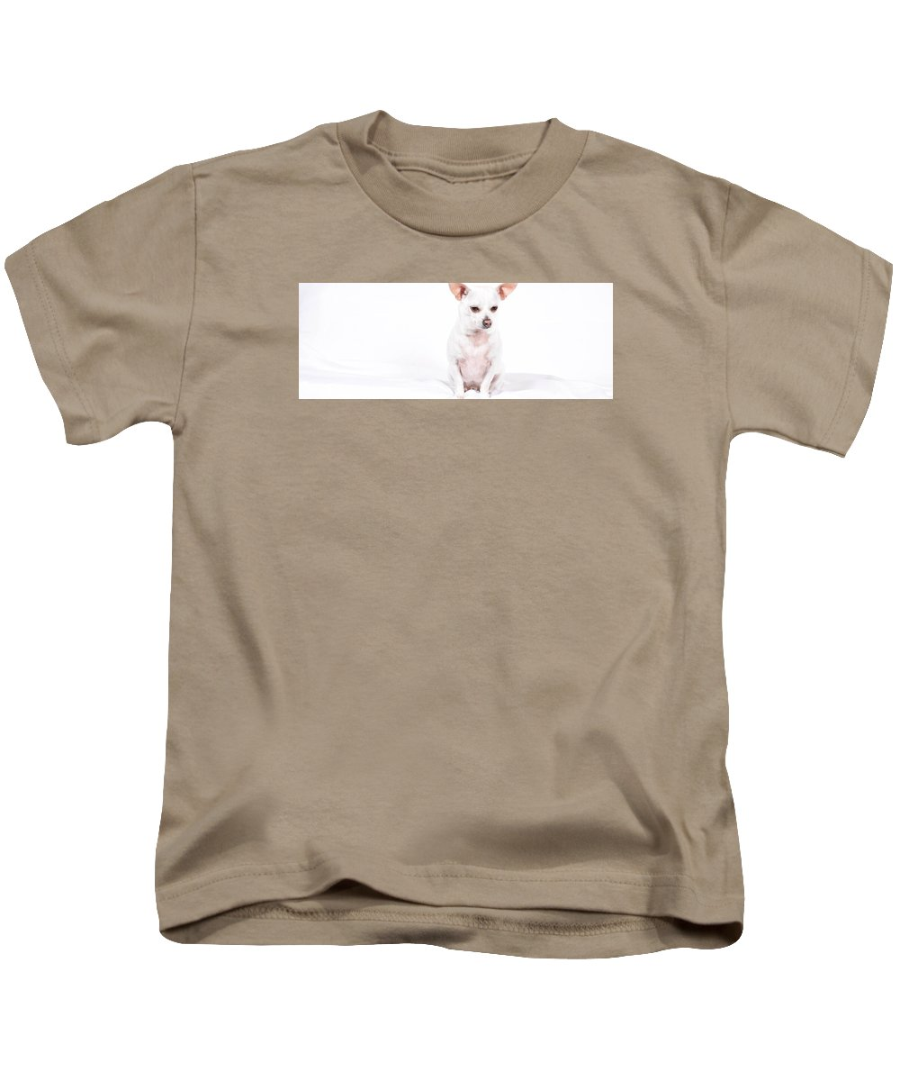 Dog Kids T-Shirt featuring the photograph White Chi On White by Katie Scott