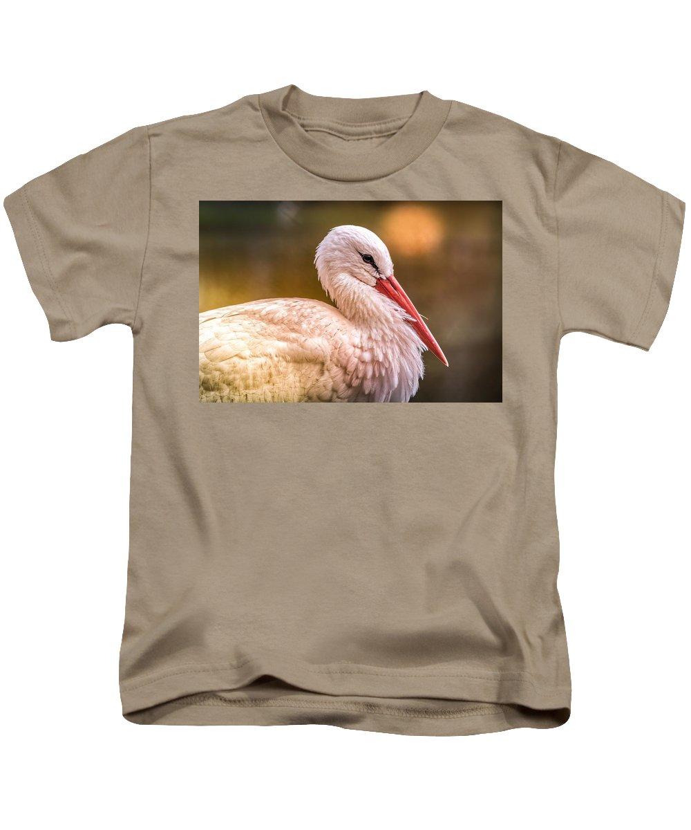 White Stork Kids T-Shirt featuring the digital art White Stork by Dorothy Binder