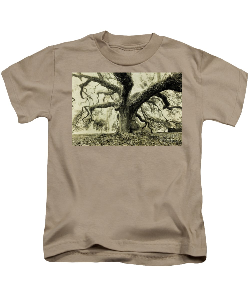 Oak Tree Kids T-Shirt featuring the photograph Winter Oak by Scott Pellegrin