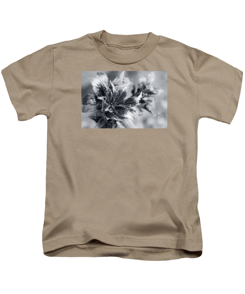 Flower Kids T-Shirt featuring the photograph Young Leaves In Black And White by Irina Effa