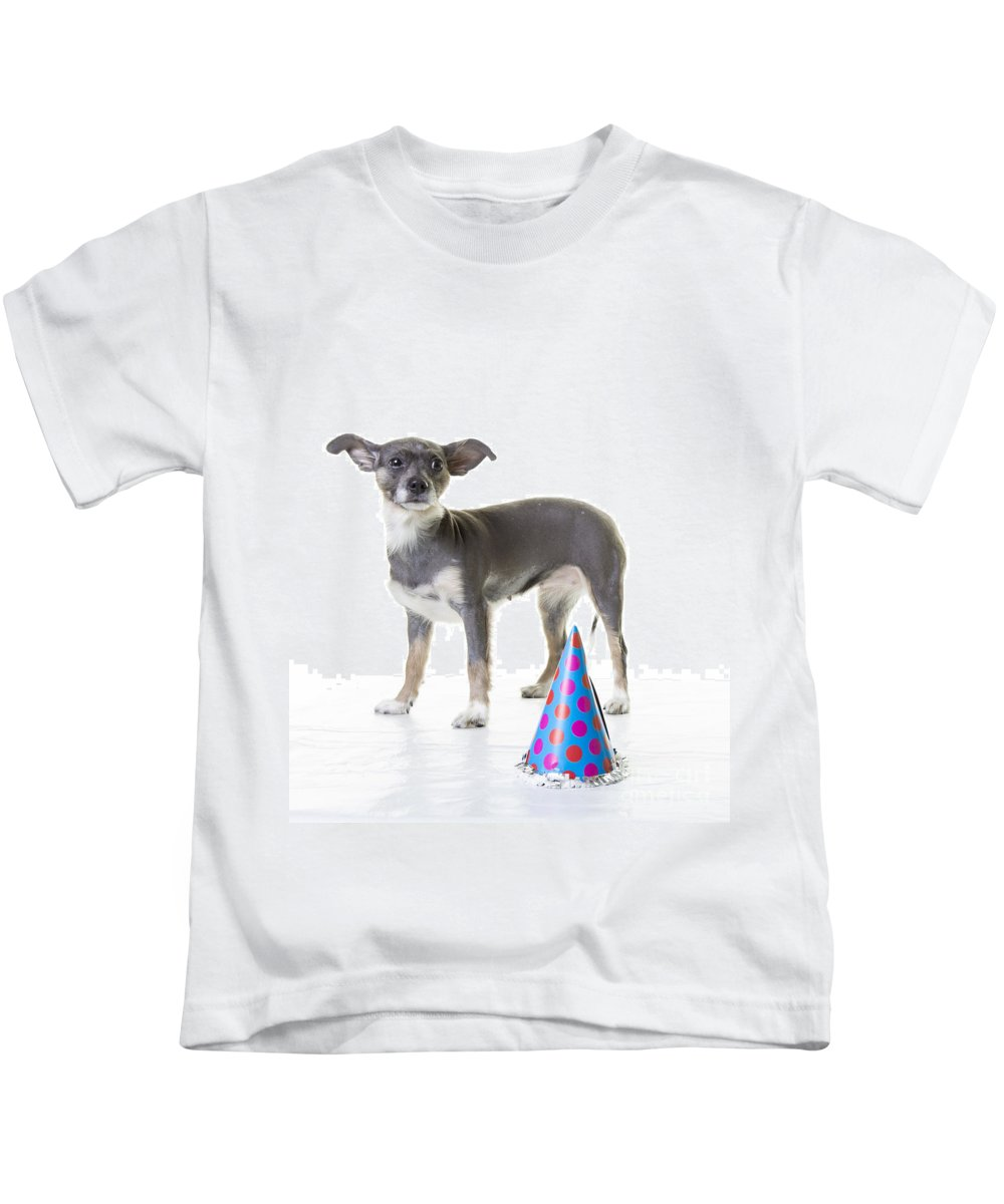 Dog Kids T-Shirt featuring the photograph Happy Birthday by Edward Fielding