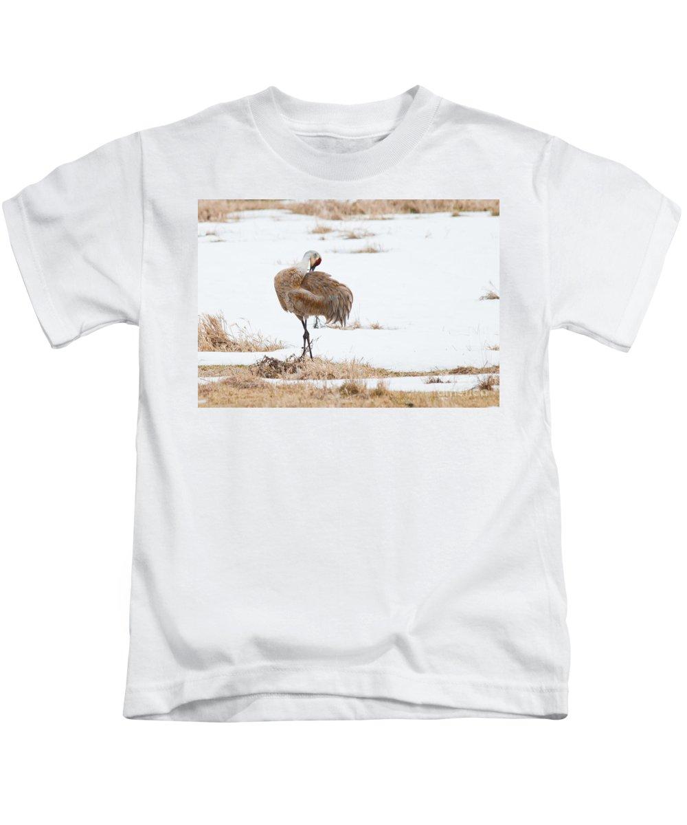 Kids T-Shirt featuring the photograph Preening Crane by Cheryl Baxter