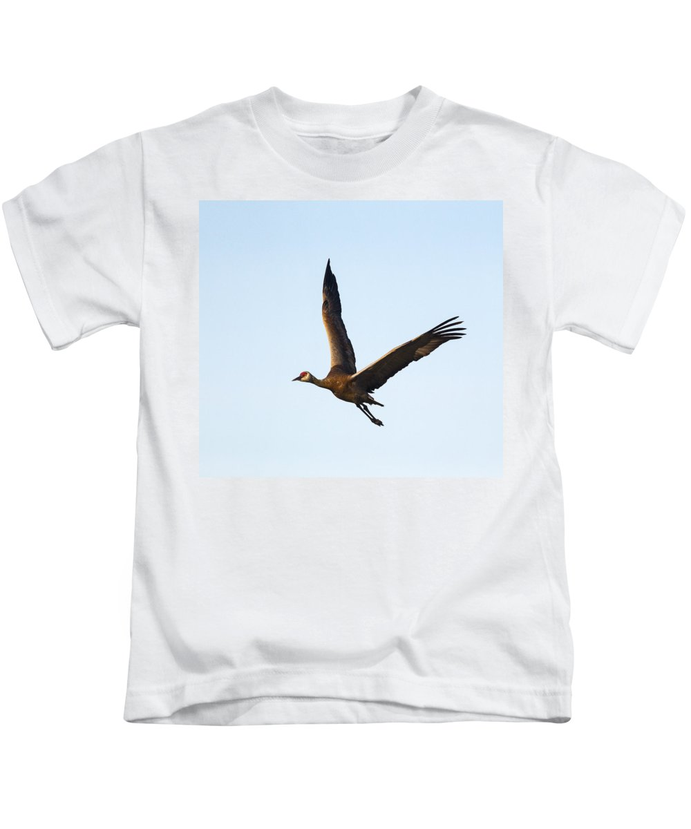 Doug Lloyd Kids T-Shirt featuring the photograph Sandhill Crane by Doug Lloyd