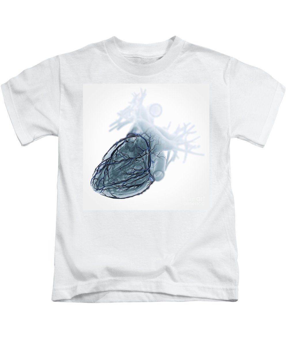 Close-up Kids T-Shirt featuring the photograph Coronary Blood Supply by Science Picture Co