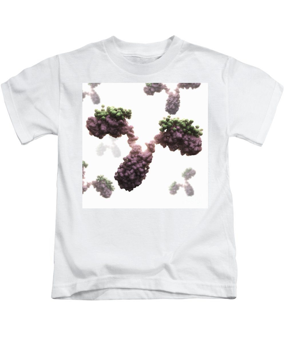 Cells Kids T-Shirt featuring the photograph Human Antibodies by Science Picture Co