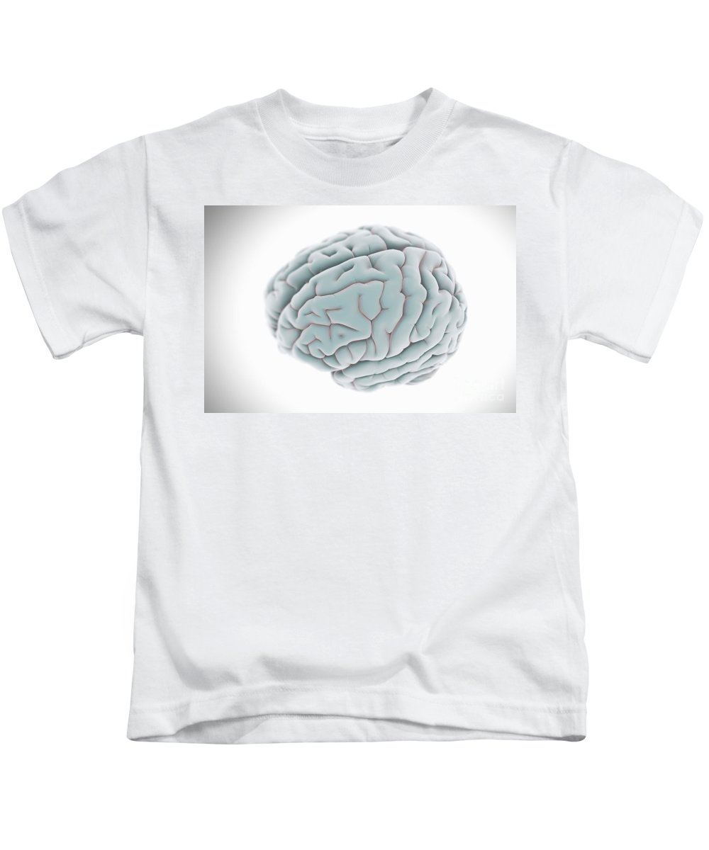 Close Up Kids T-Shirt featuring the photograph Human Brain by Science Picture Co