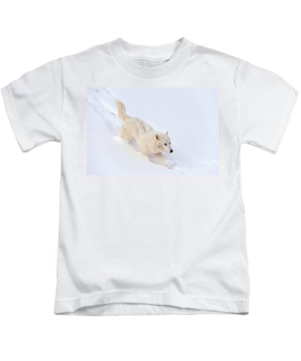 Canis Lupus Arctos Kids T-Shirt featuring the photograph Arctic Wolf by John Shaw