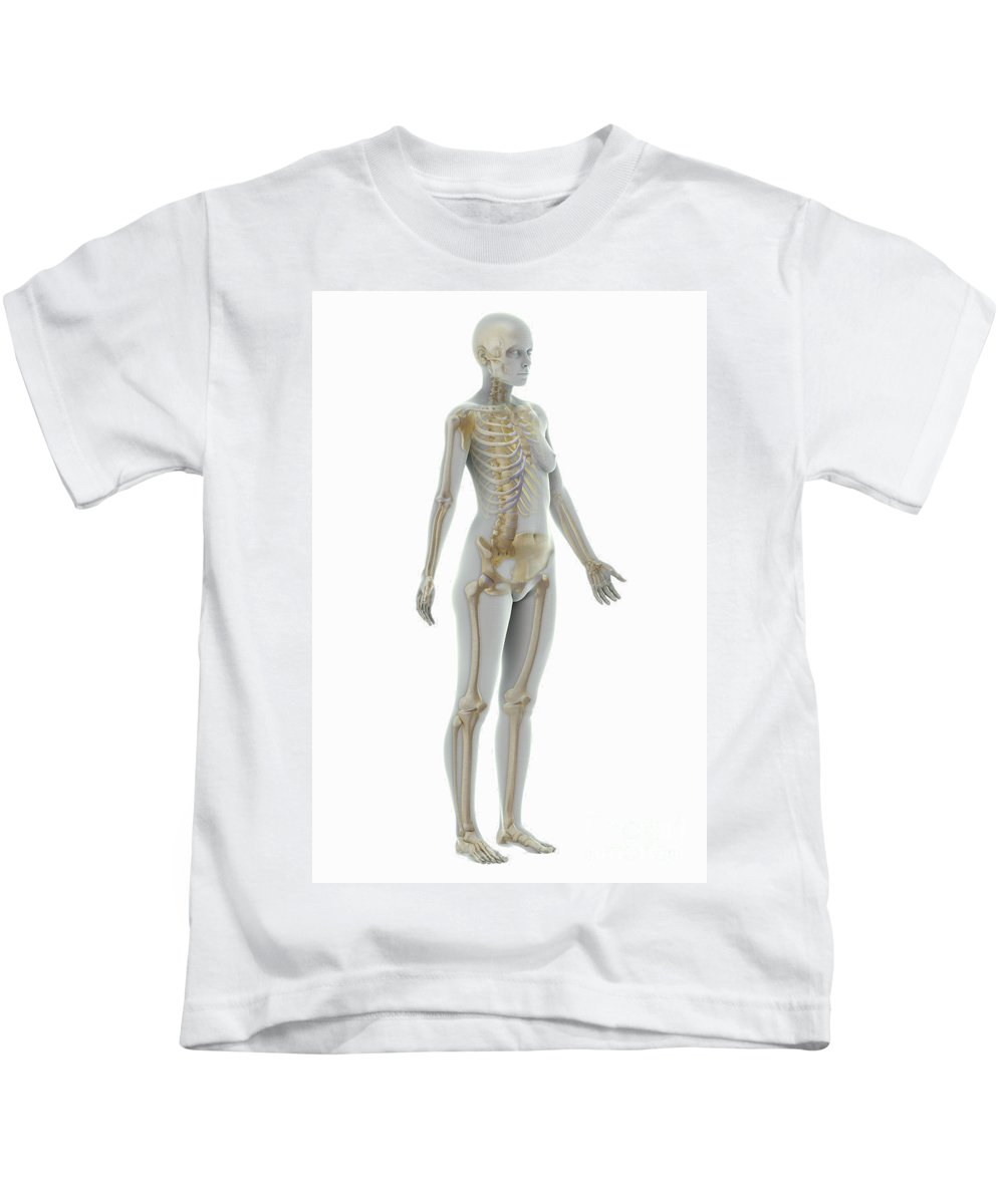 Human Body Kids T-Shirt featuring the photograph The Skeleton Female by Science Picture Co