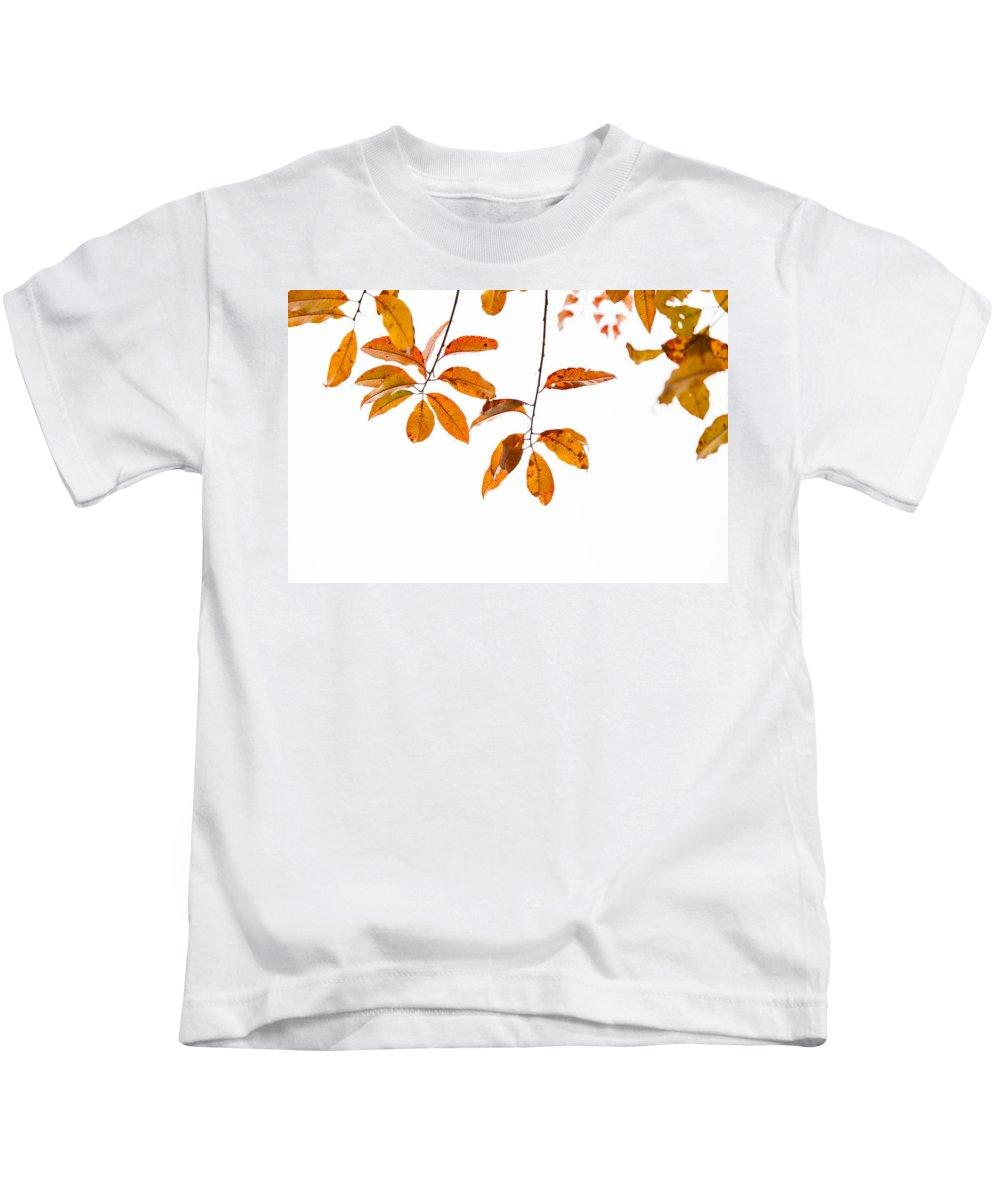Leaves Kids T-Shirt featuring the photograph Almost Time by Karol Livote