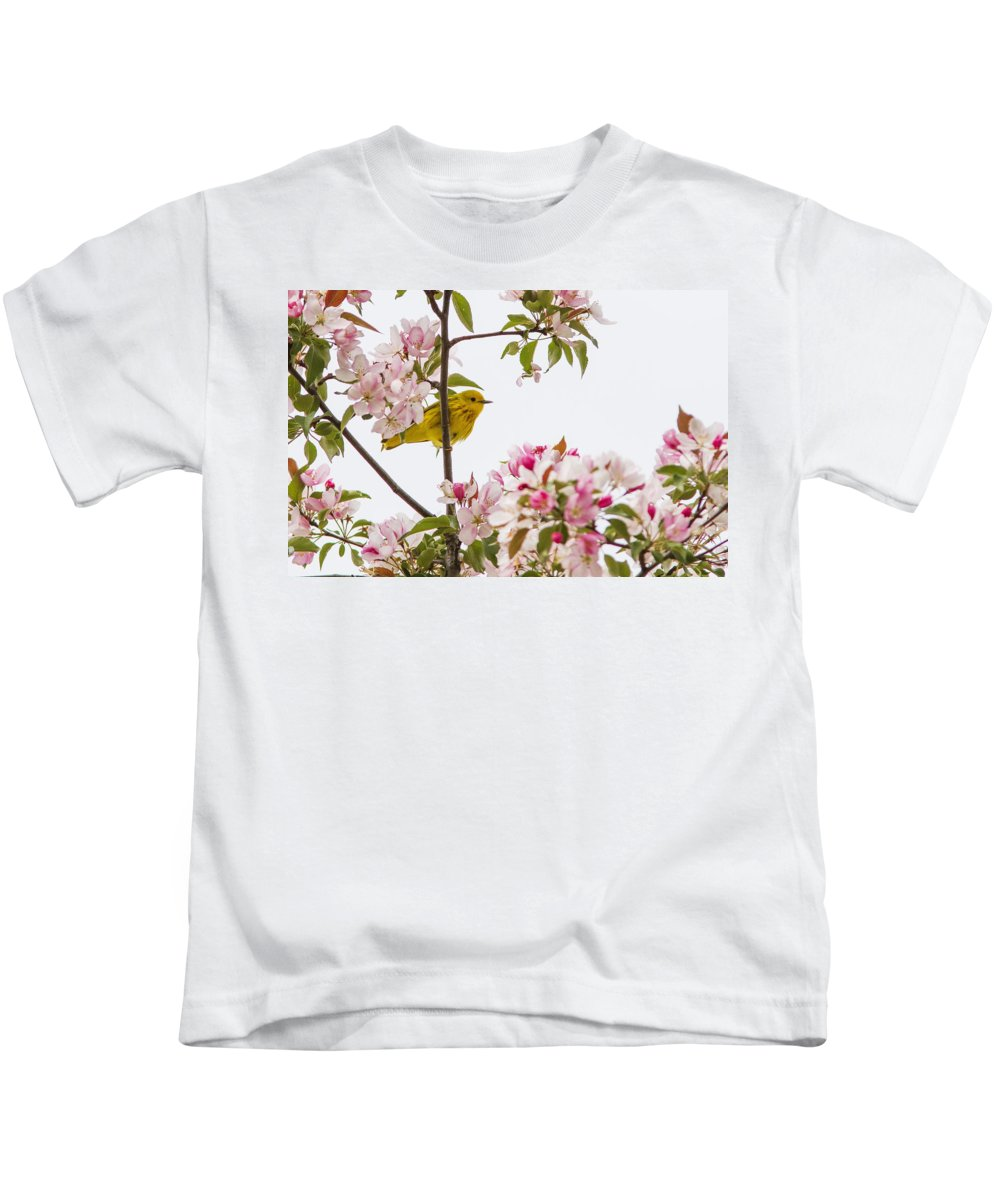 Warblers Kids T-Shirt featuring the photograph Blossom And Bird by Mircea Costina Photography