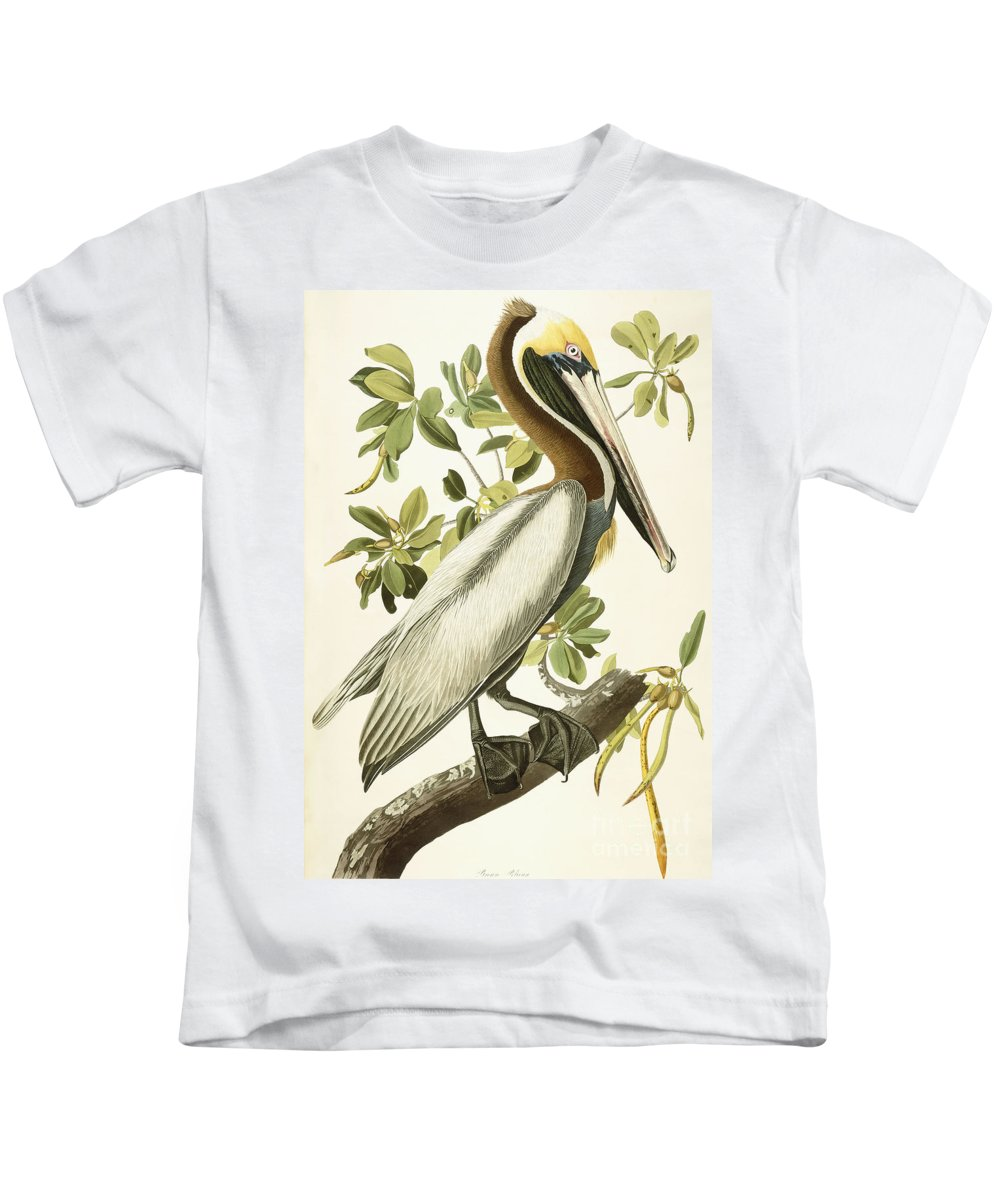 Brown Pelican Kids T-Shirt featuring the painting Brown Pelican by John James Audubon