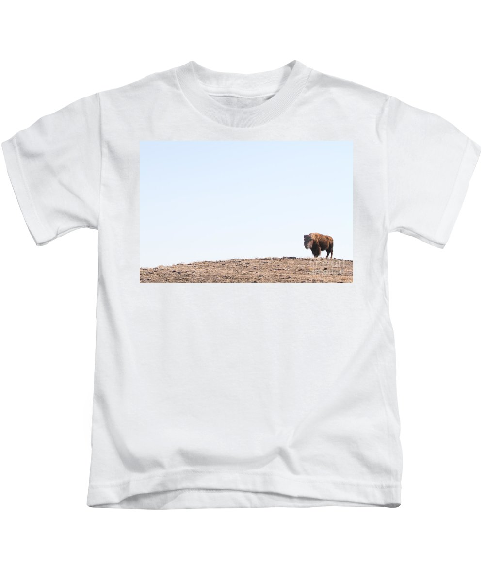 Buffalo Kids T-Shirt featuring the photograph Buffalo Hill by James BO Insogna