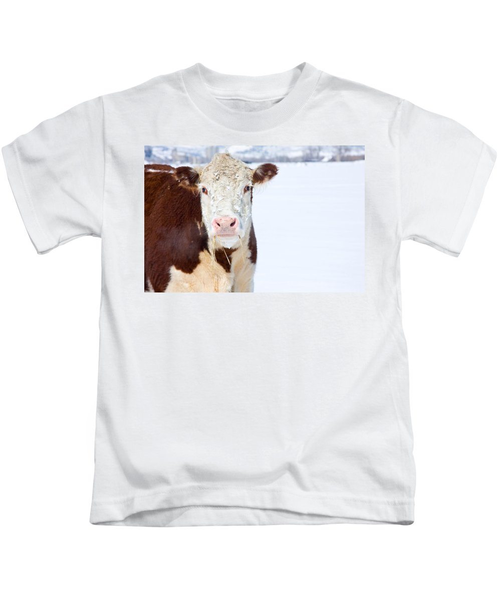 Cow Kids T-Shirt featuring the photograph Cow - Fine Art Photography Print by James BO Insogna