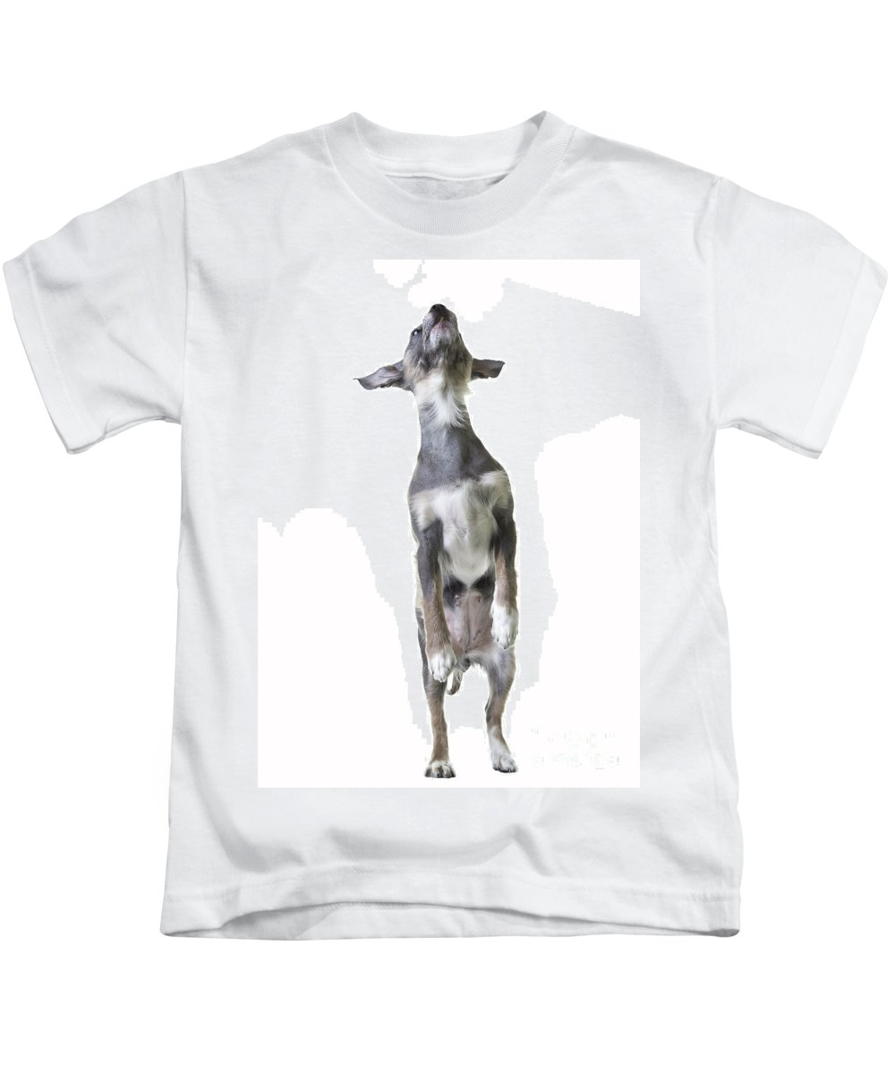 Dog Kids T-Shirt featuring the photograph Dancing Dog by Edward Fielding