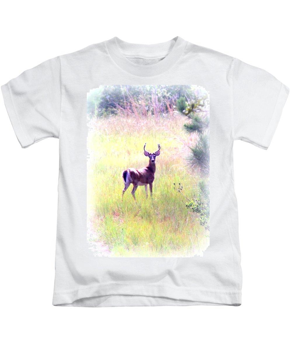 Deer - Buck - White-tailed Kids T-Shirt featuring the photograph Deer - Buck - White-tailed by Travis Truelove