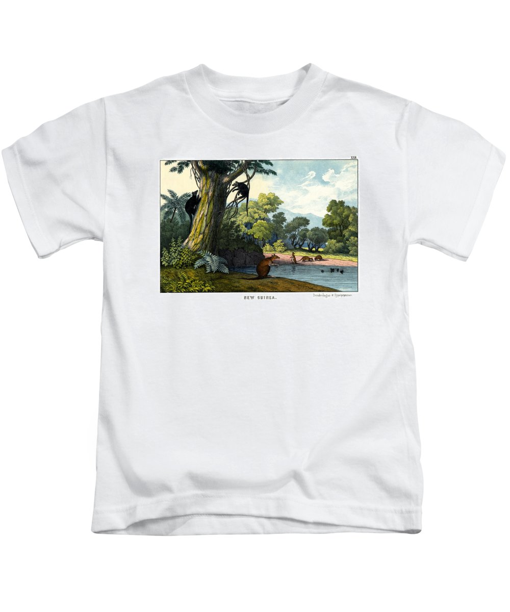 Wild Animals Kids T-Shirt featuring the drawing Dendrolagus And Hypsiprymnus by Splendid Art Prints