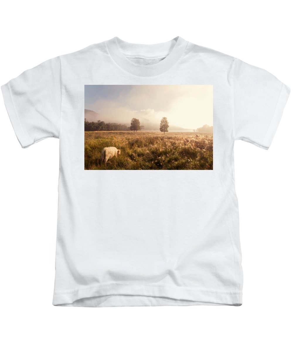 Jenny Rainbow Fine Art Photography Kids T-Shirt featuring the photograph Dreamy Fields. The Trossachs. Scotland by Jenny Rainbow