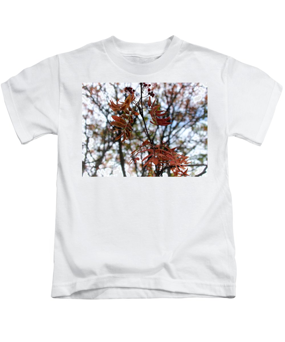Finland Kids T-Shirt featuring the photograph Early Fall Of Rowan by Jouko Lehto
