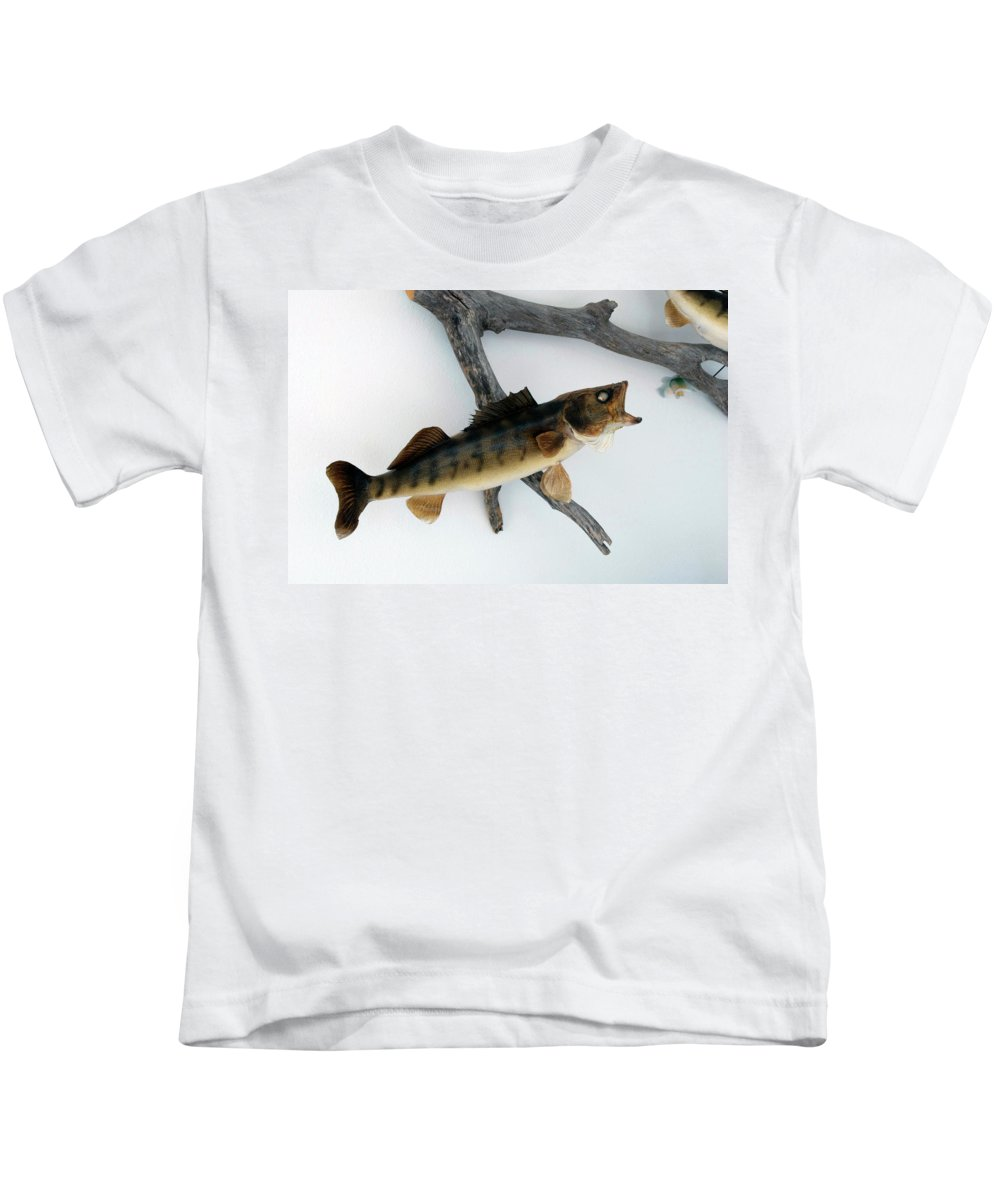 Animals Kids T-Shirt featuring the photograph Fish Mount Set 02 A by Thomas Woolworth