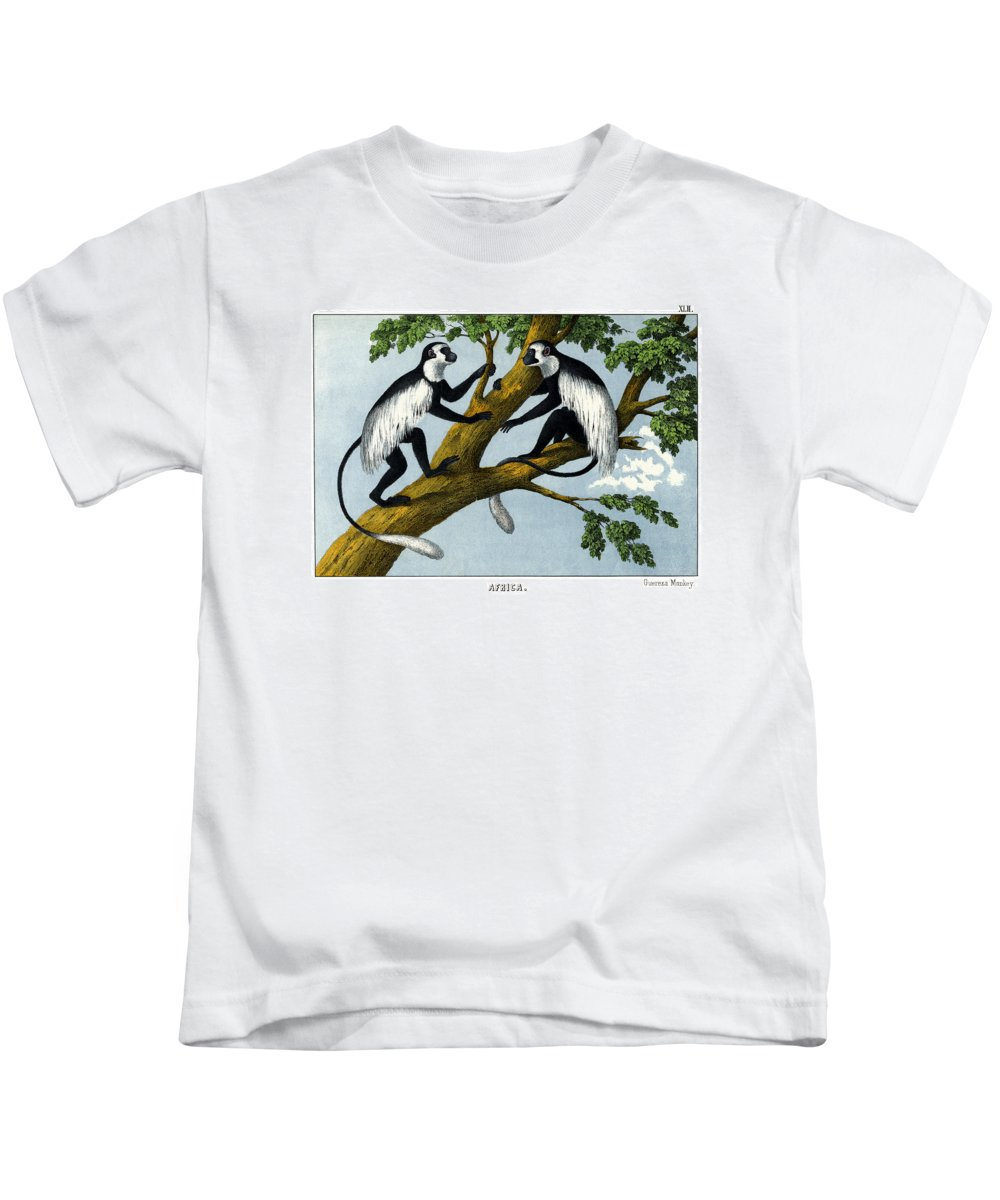 Wild Animals Kids T-Shirt featuring the drawing Guereza Monkey by Splendid Art Prints