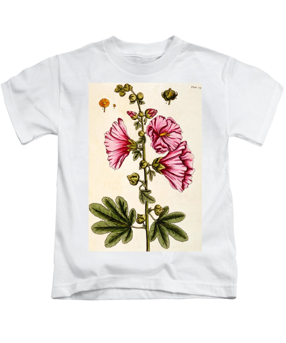 Still-life Kids T-Shirt featuring the painting Hollyhocks by Elizabeth Blackwell