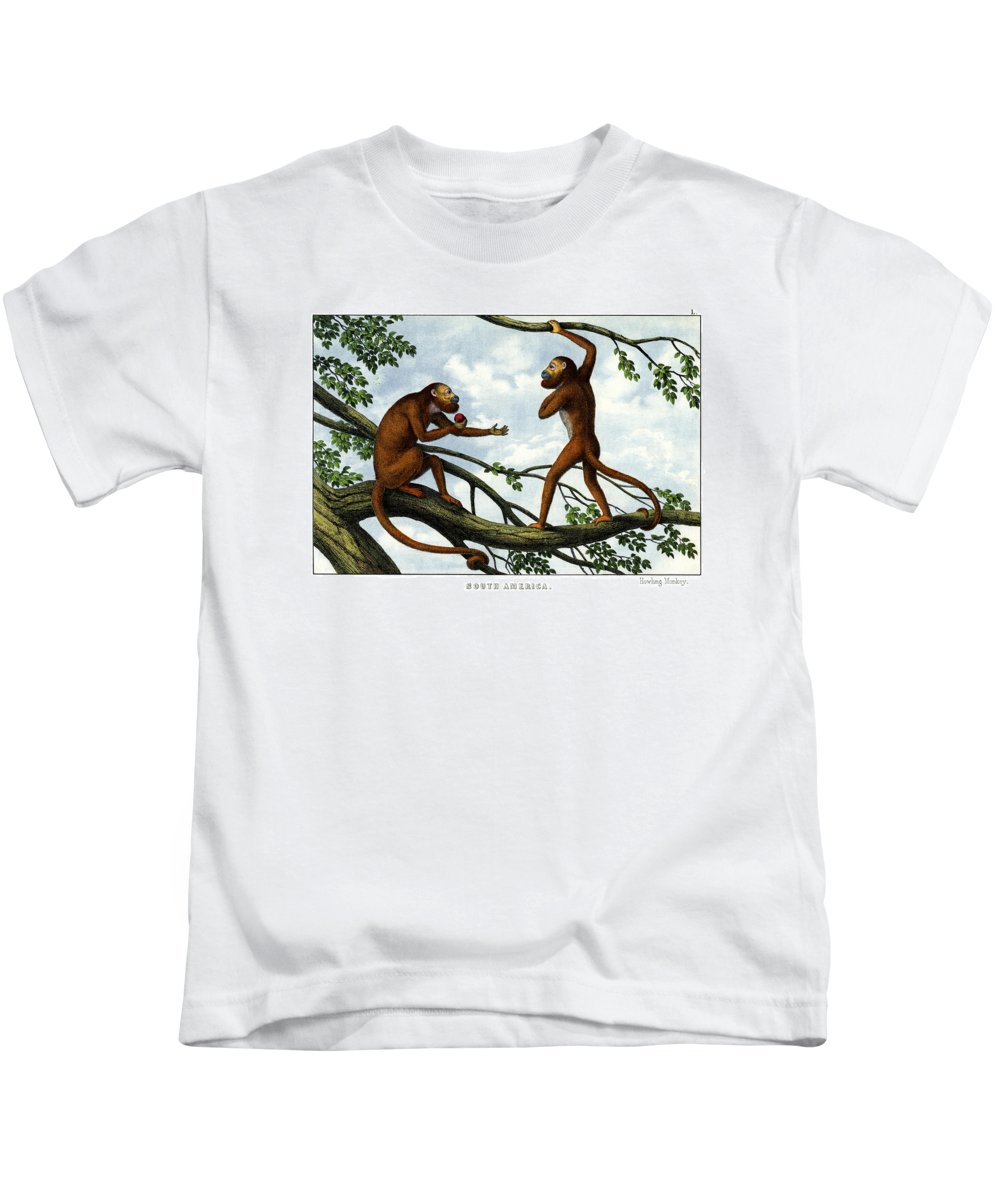 Wild Animals Kids T-Shirt featuring the drawing Howling Monkey by Splendid Art Prints