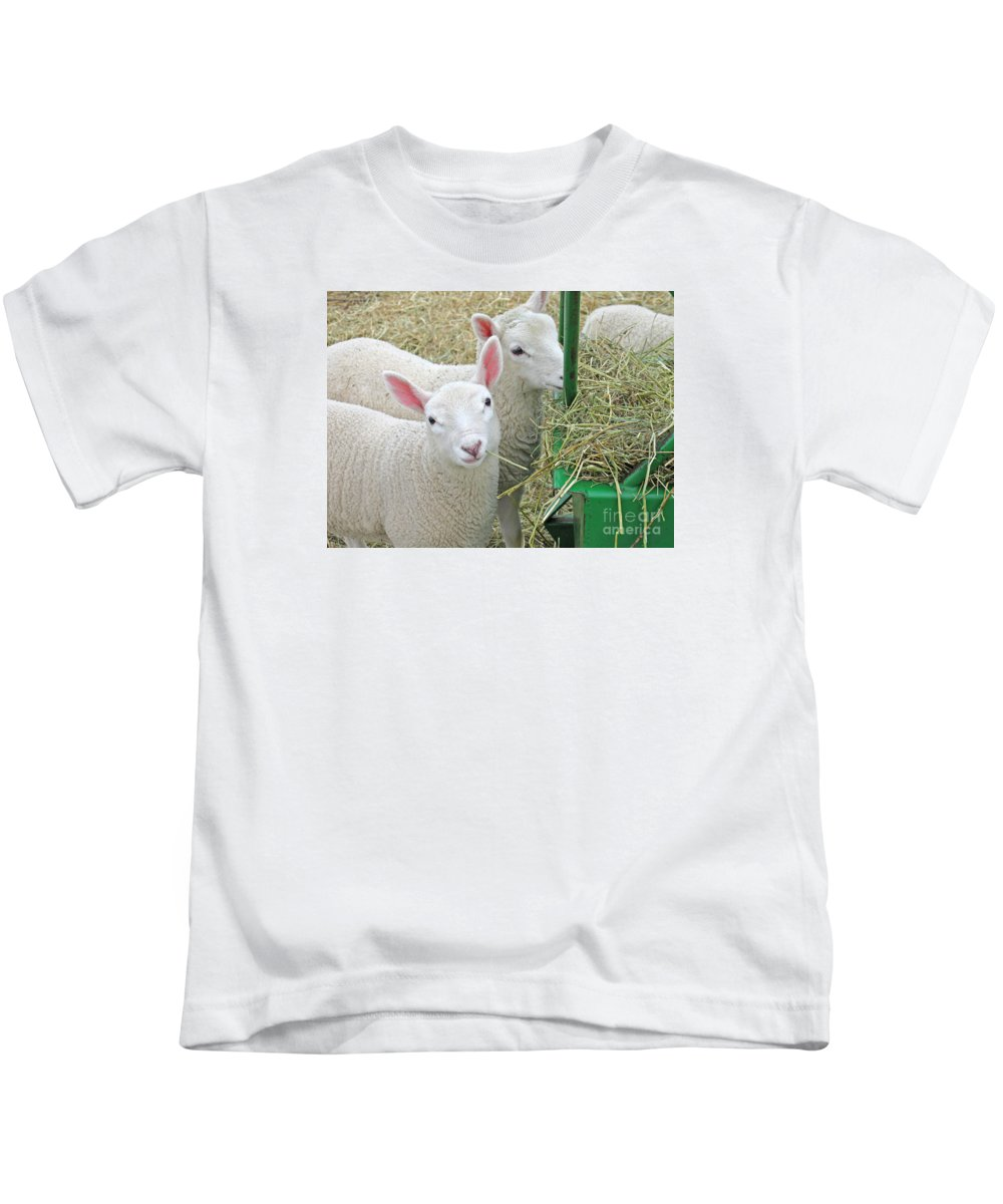 Lamb Kids T-Shirt featuring the photograph Innocence by Ann Horn