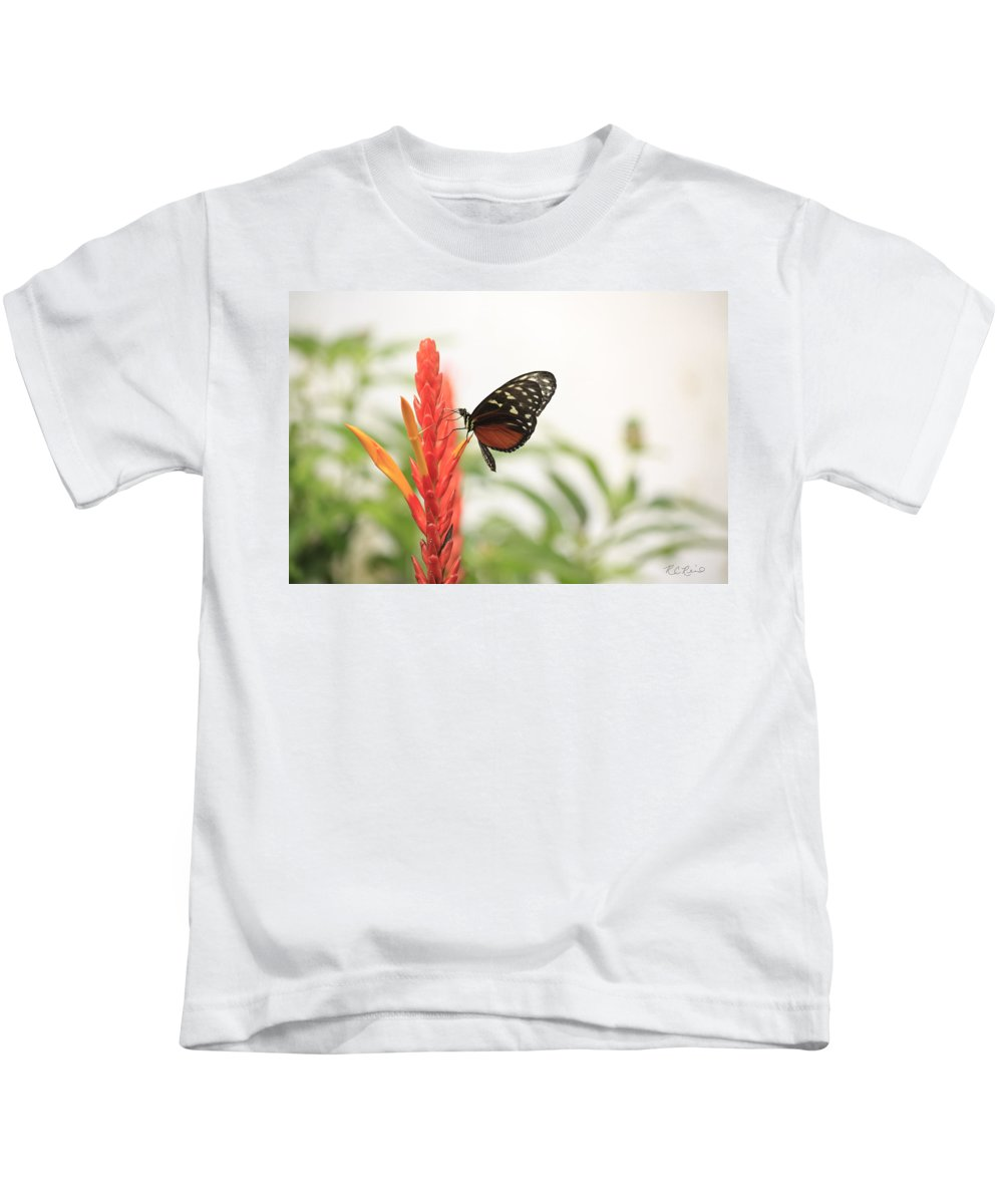 Florida Kids T-Shirt featuring the photograph Key West Butterfly Conservatory - Monarch Danaus Plexippus 3 by Ronald Reid