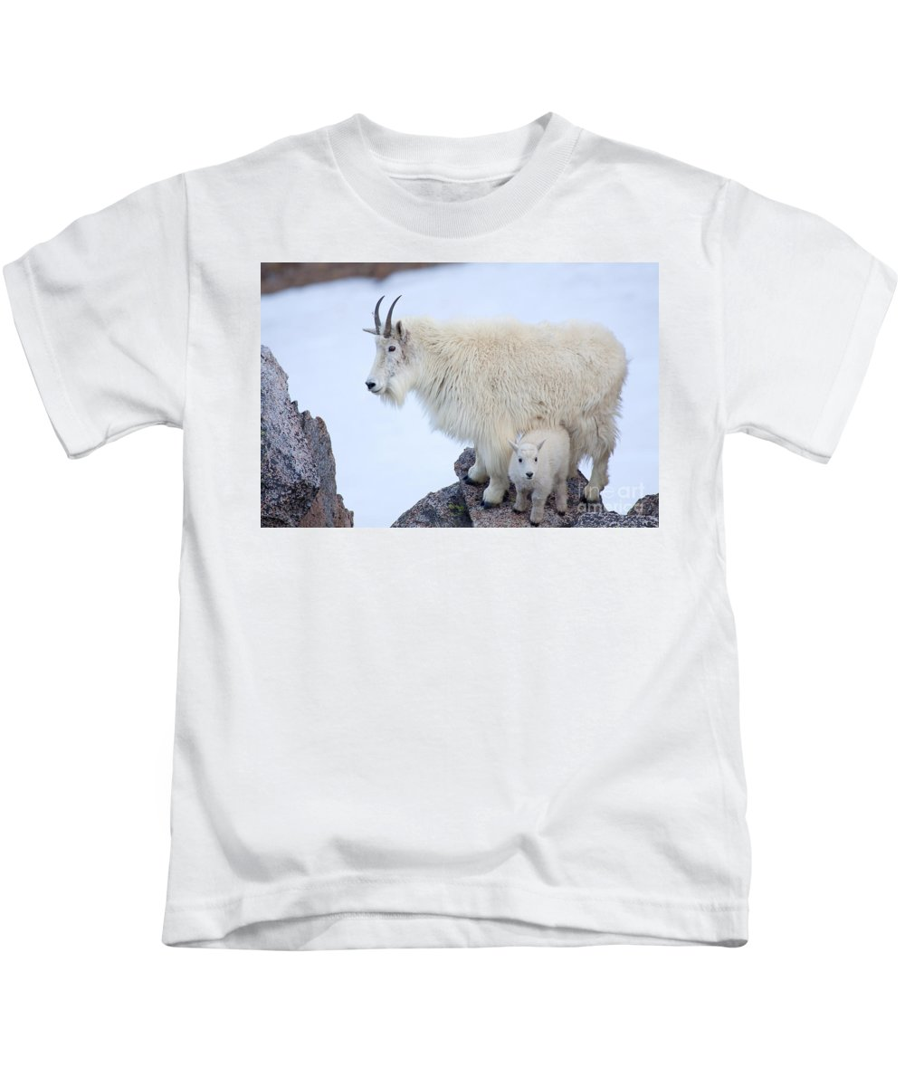 Mountain Goats Kids T-Shirt featuring the photograph Me And Mom by Jim Garrison