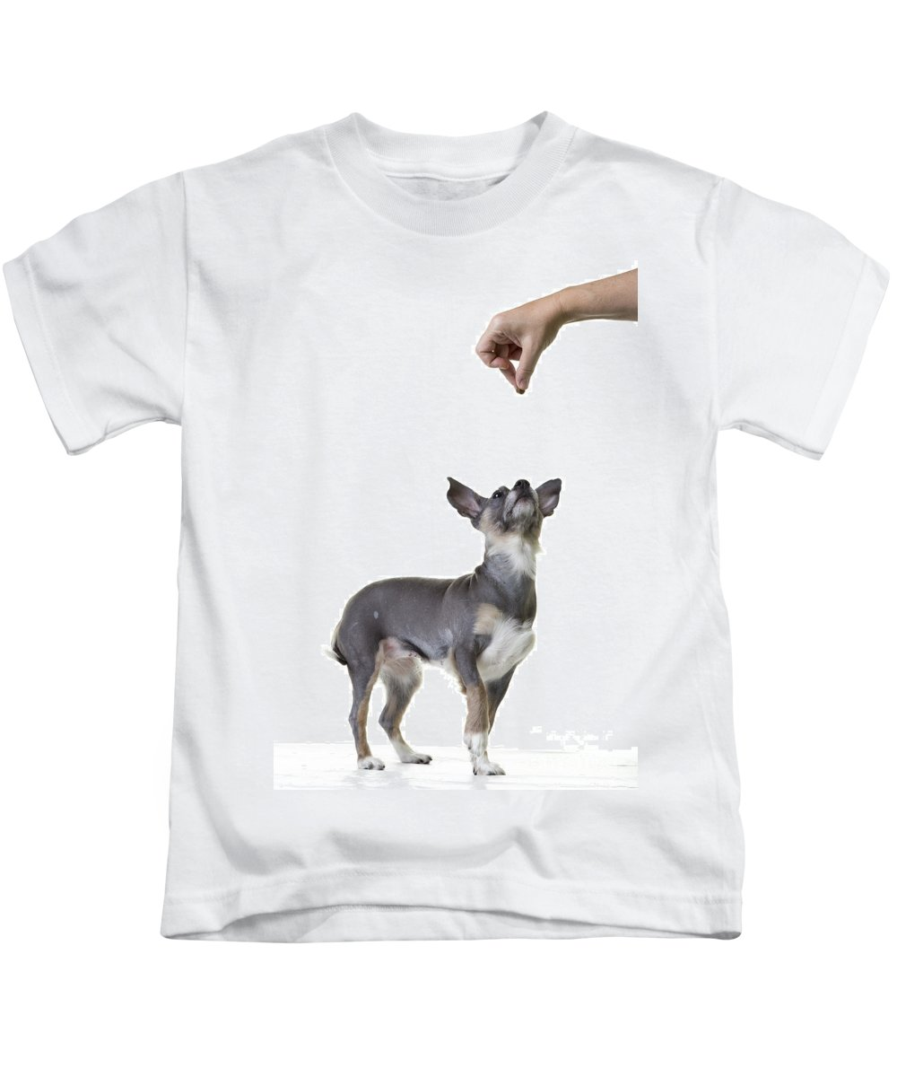 Dog Kids T-Shirt featuring the photograph Motivation by Edward Fielding