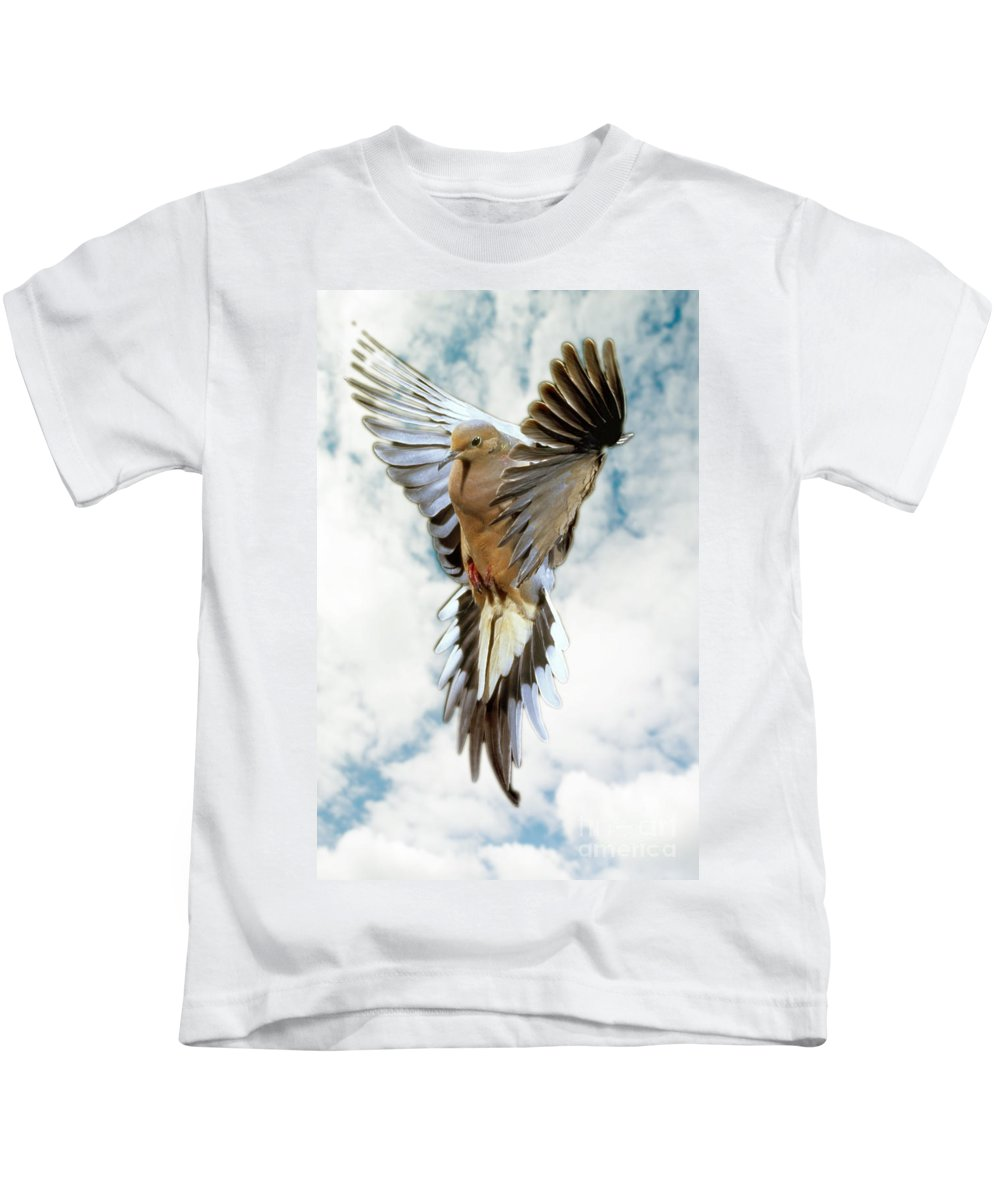 Mourning Dove Kids T-Shirt featuring the photograph Mourning Dove by Anthony Mercieca