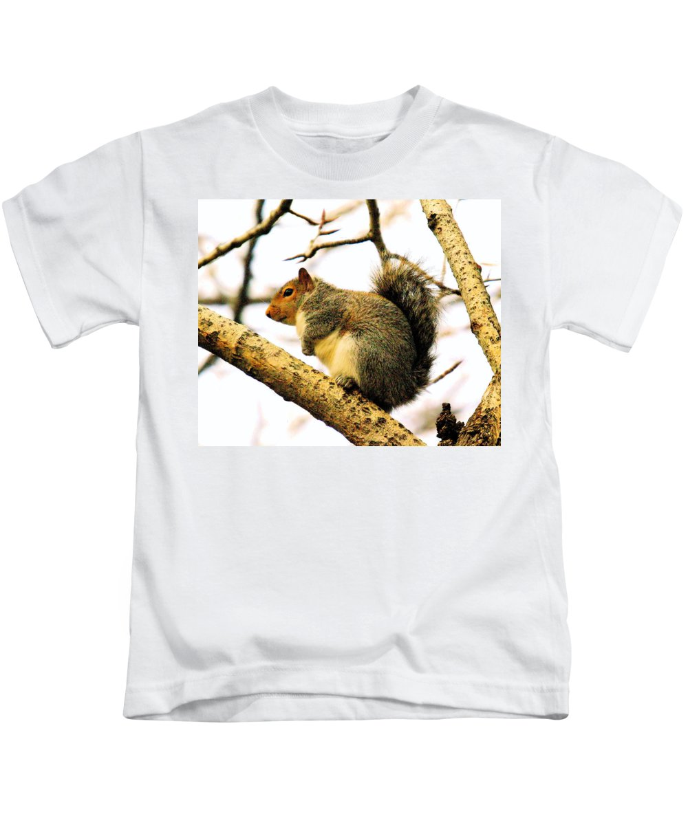 Squirrels Kids T-Shirt featuring the photograph Mr Fat And Sassy by Jeff Swan