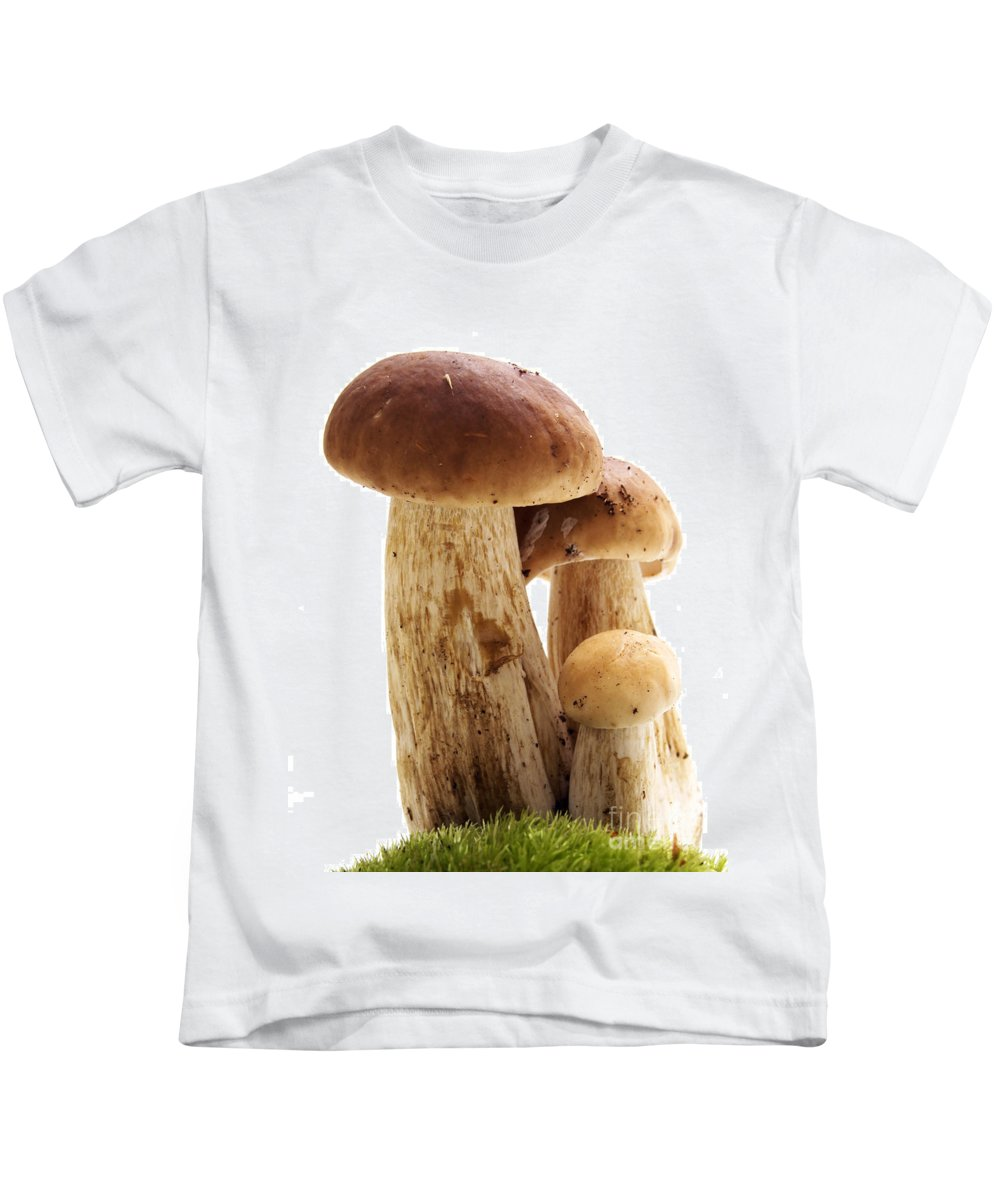 Autumn Kids T-Shirt featuring the photograph Mushrooms by Michal Bednarek
