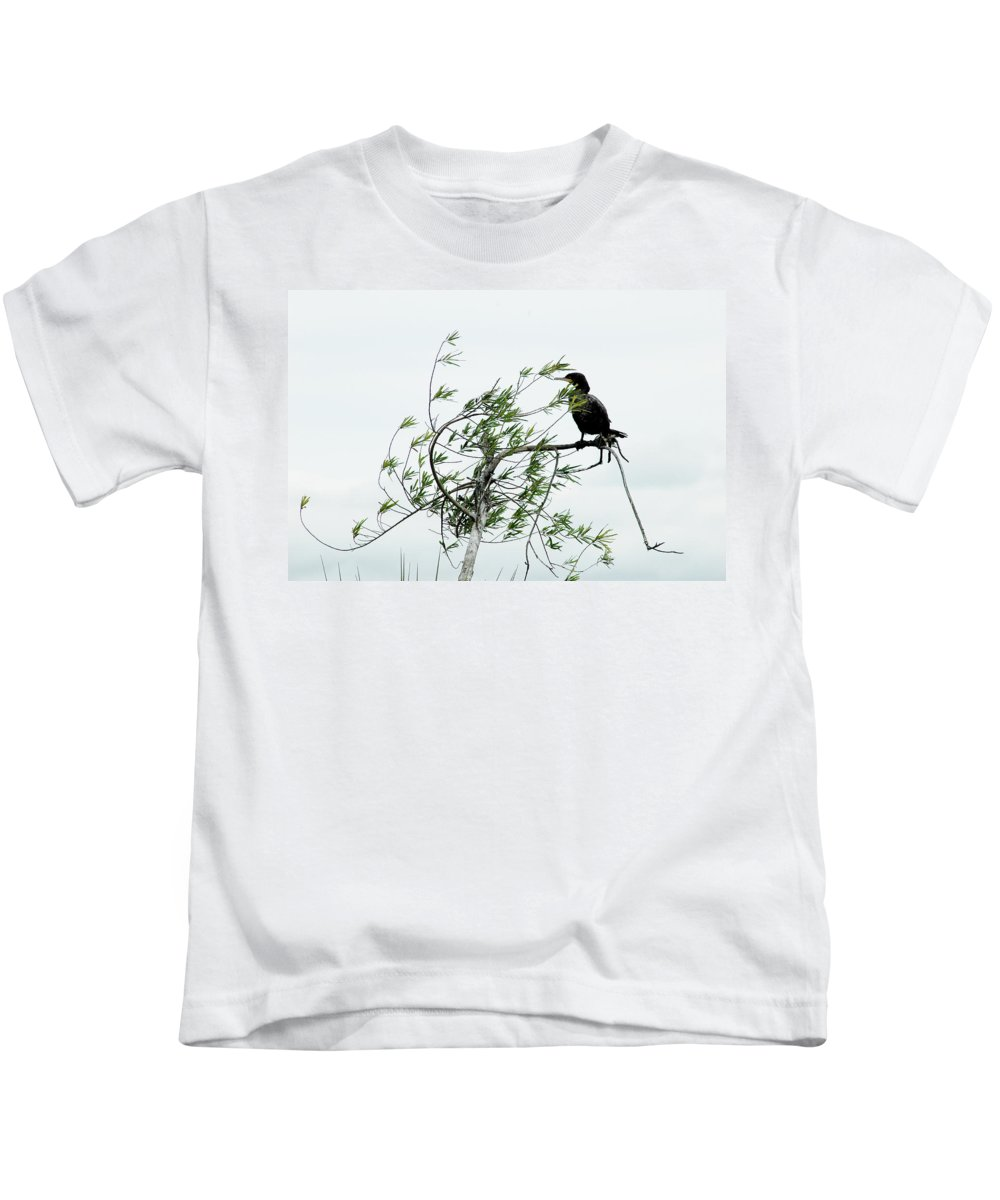 Cormorant Kids T-Shirt featuring the photograph Neotropic Cormorant by Norman Johnson
