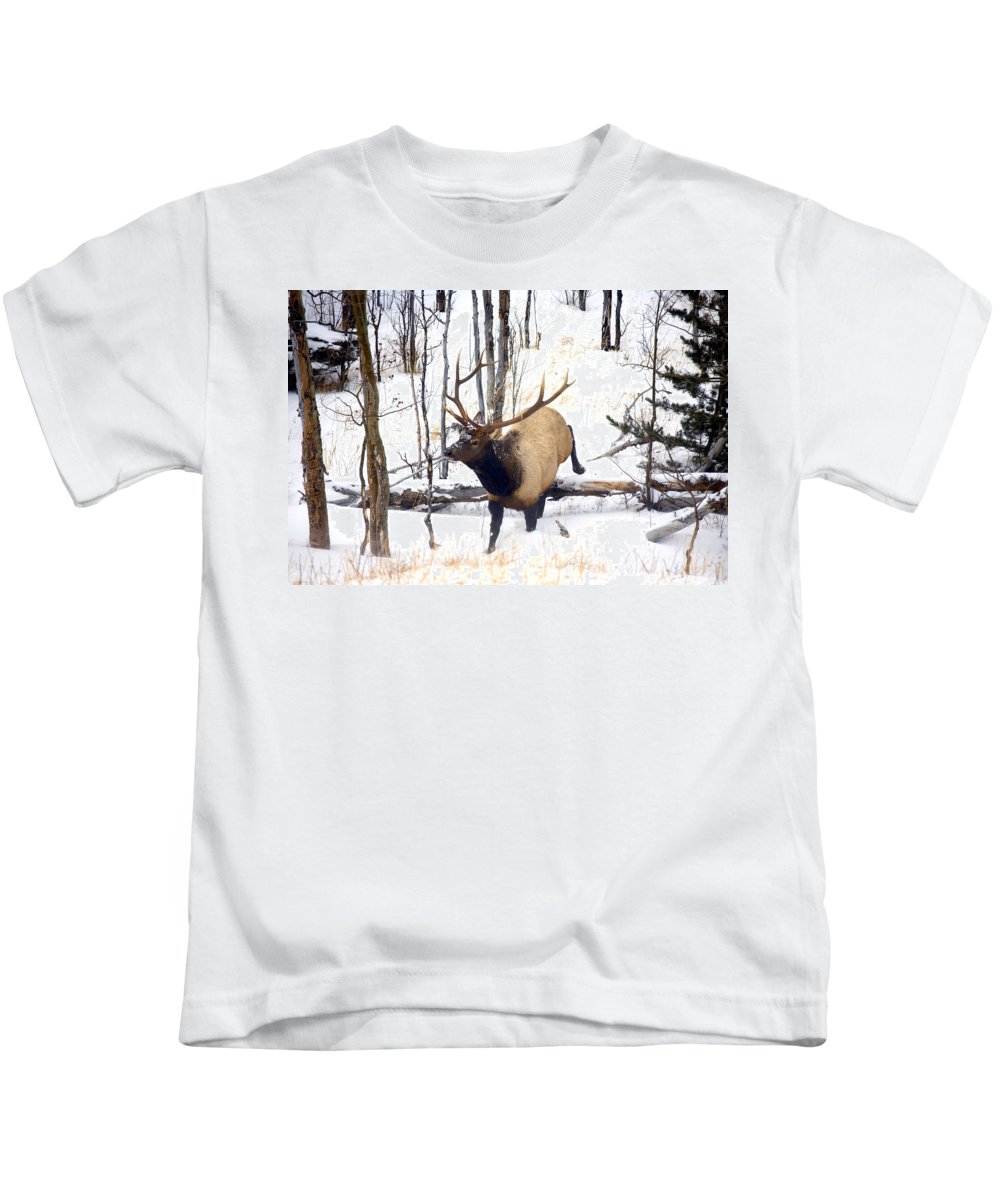 Elk Kids T-Shirt featuring the photograph On The Move by Mike Dawson