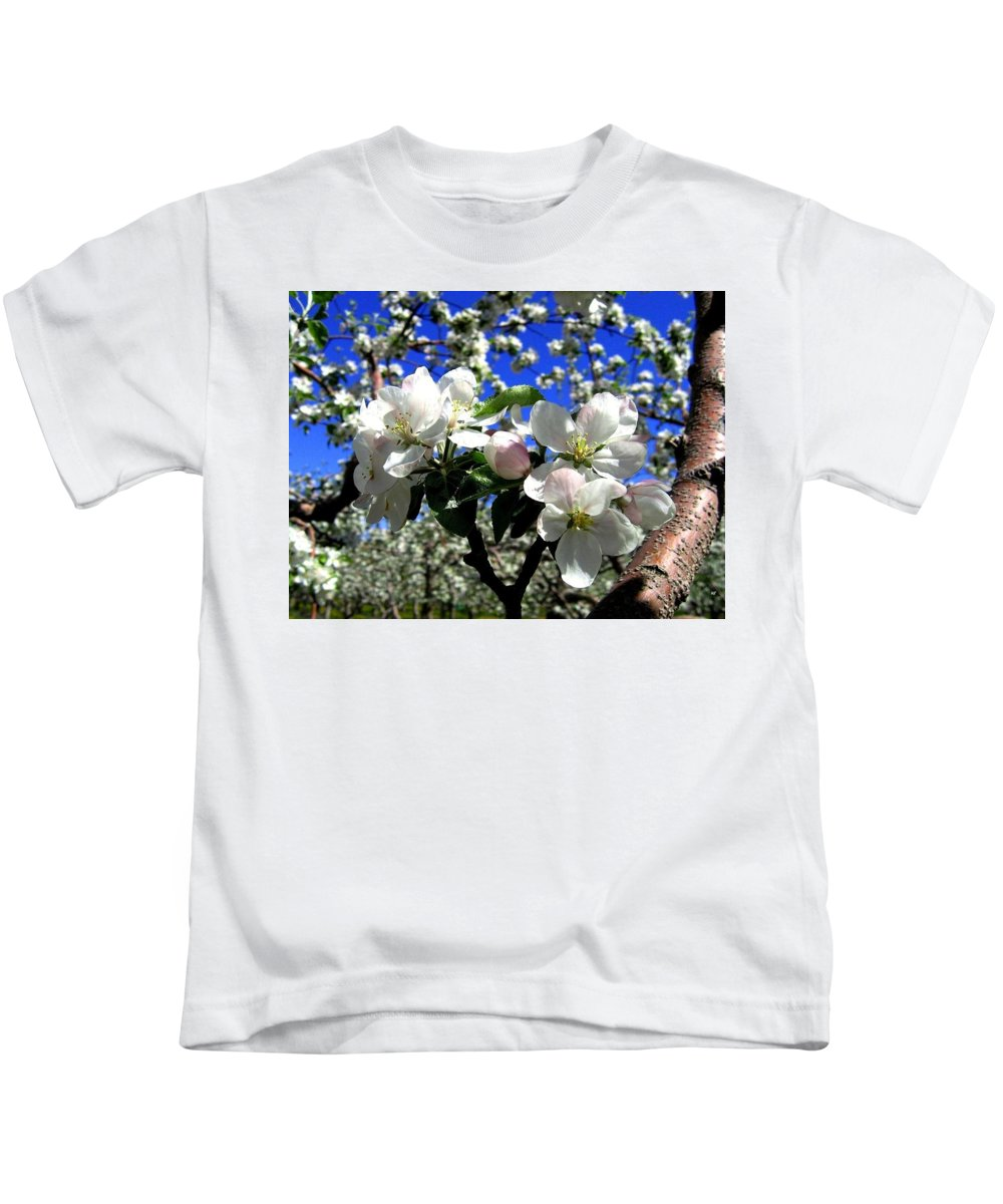 Apple Blossoms Kids T-Shirt featuring the photograph Orchard Ovation by Will Borden